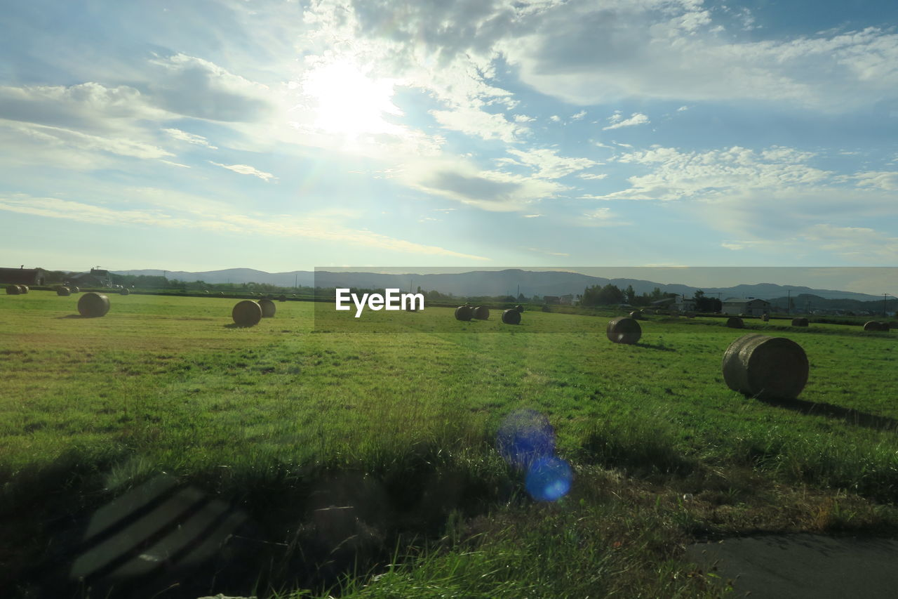 sky, landscape, land, environment, field, tranquil scene, plant, cloud - sky, nature, bale, tranquility, beauty in nature, scenics - nature, grass, agriculture, day, hay, no people, farm, rural scene, outdoors