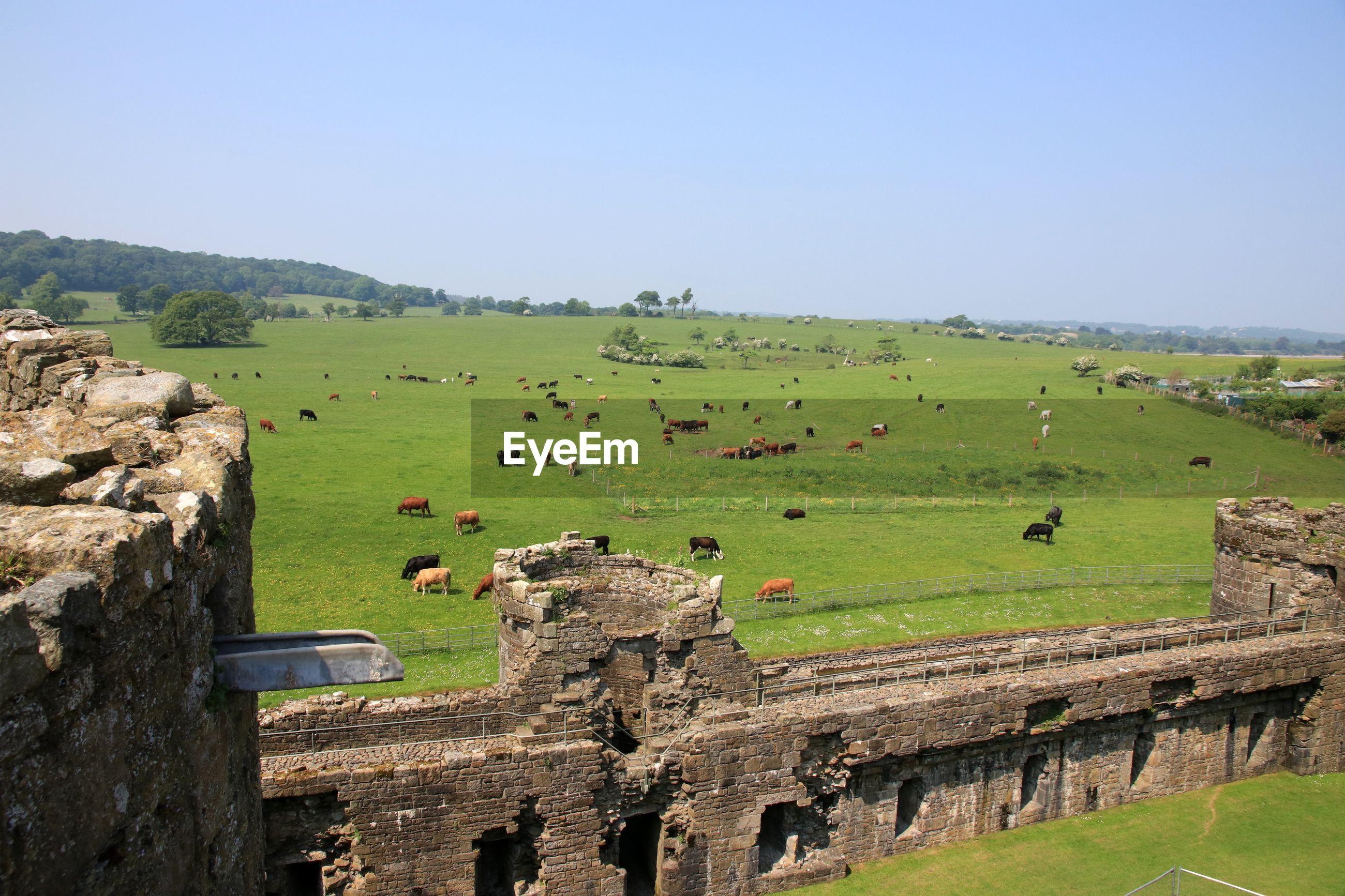 View fron beaumaris castle