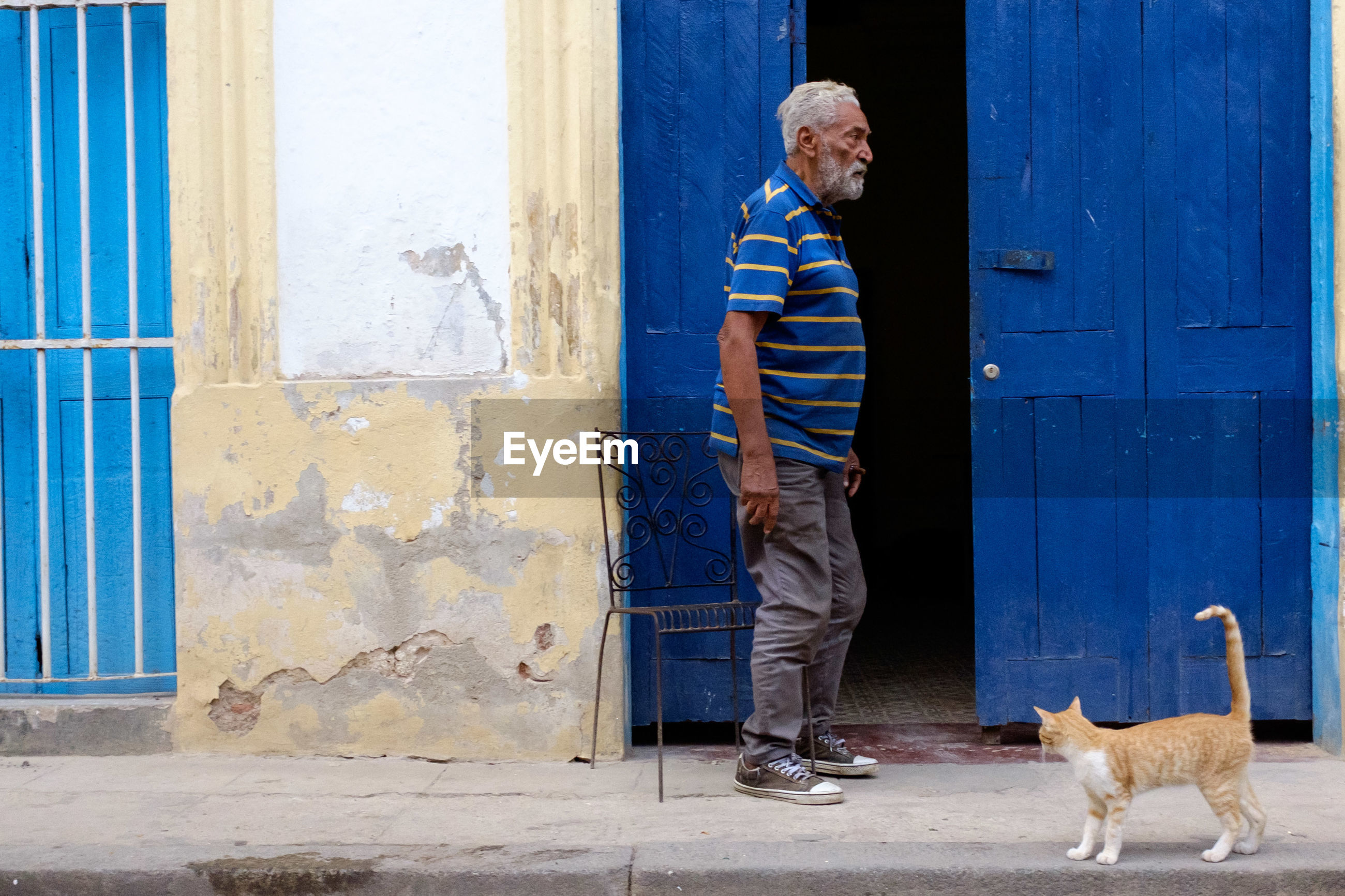 door, standing, one person, casual clothing, full length, real people, senior adult, day, blue, outdoors, pets, architecture, animal themes, people