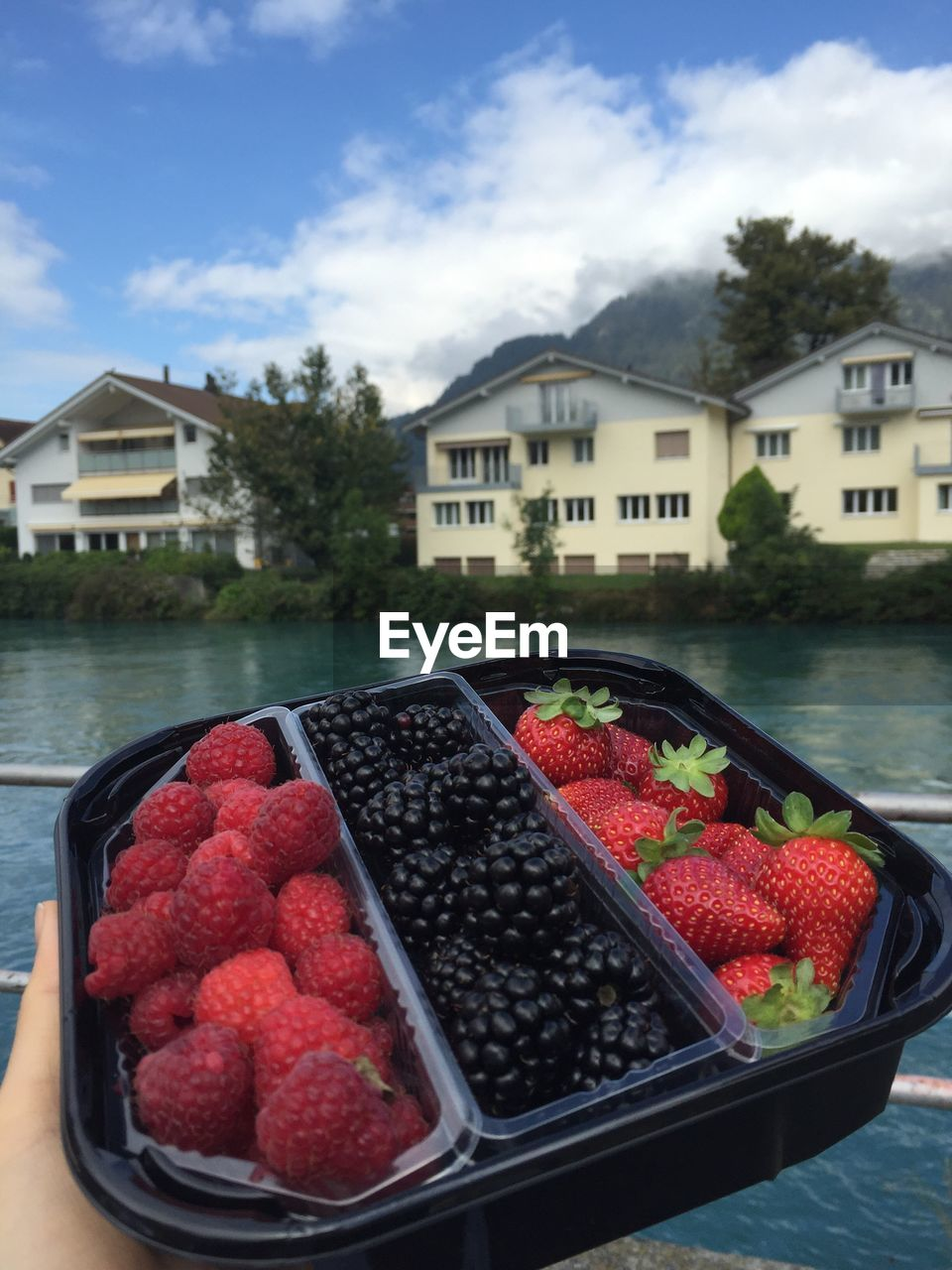 RED FRUITS IN FRONT OF BUILDINGS