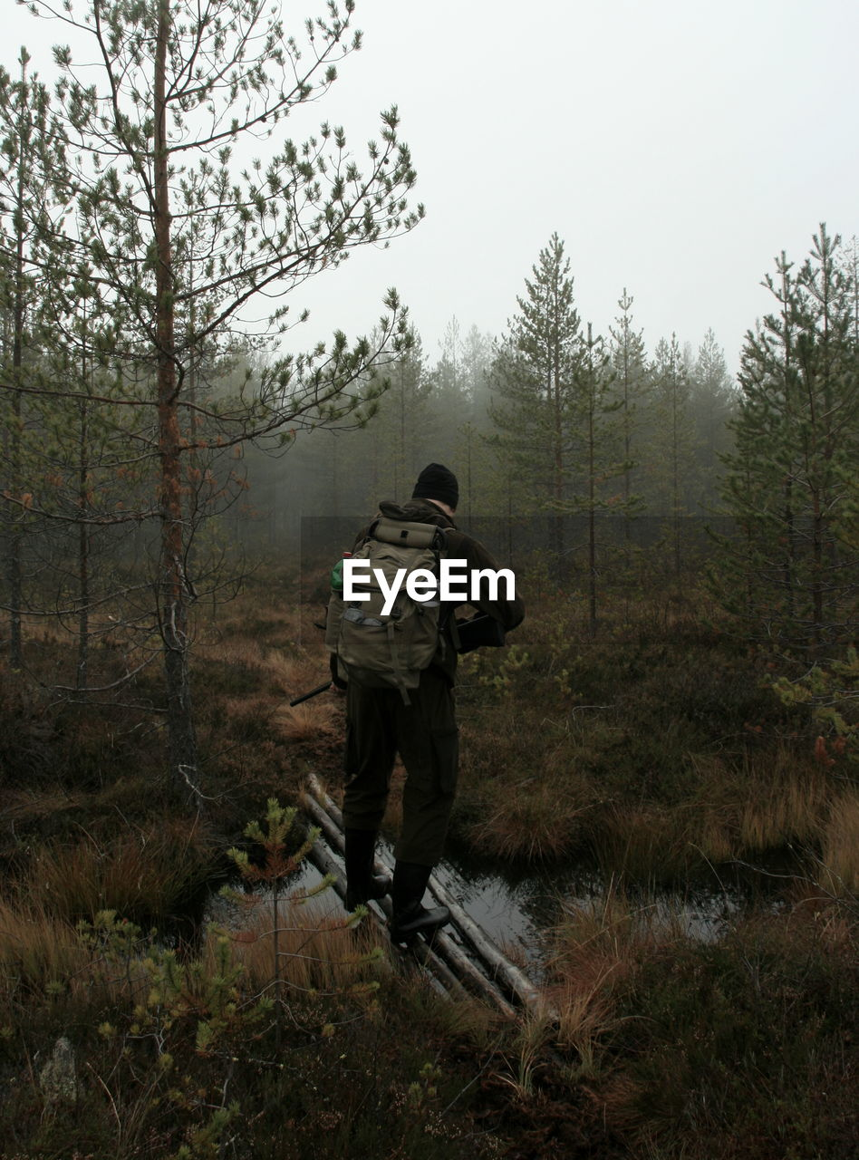 Rear view of man standing on wood in forest during foggy weather