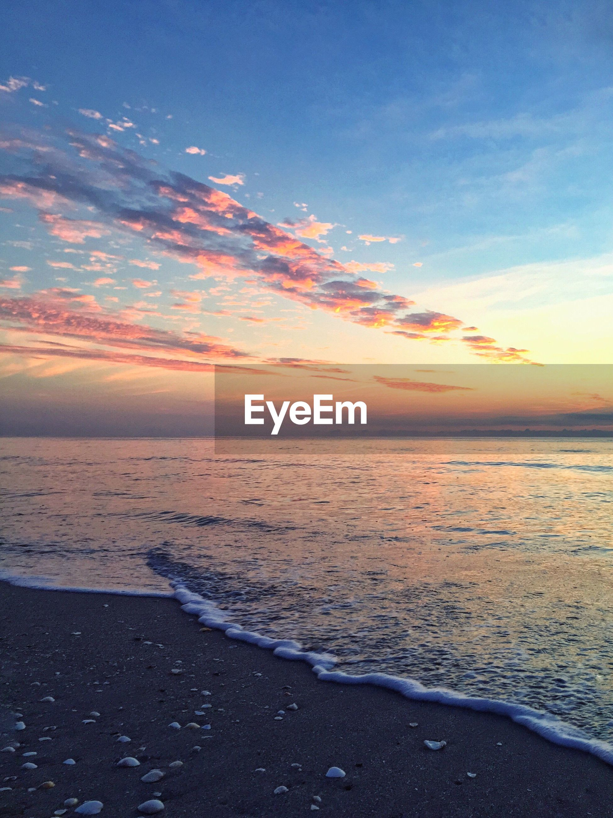 Scenic view of sea shore at sunset