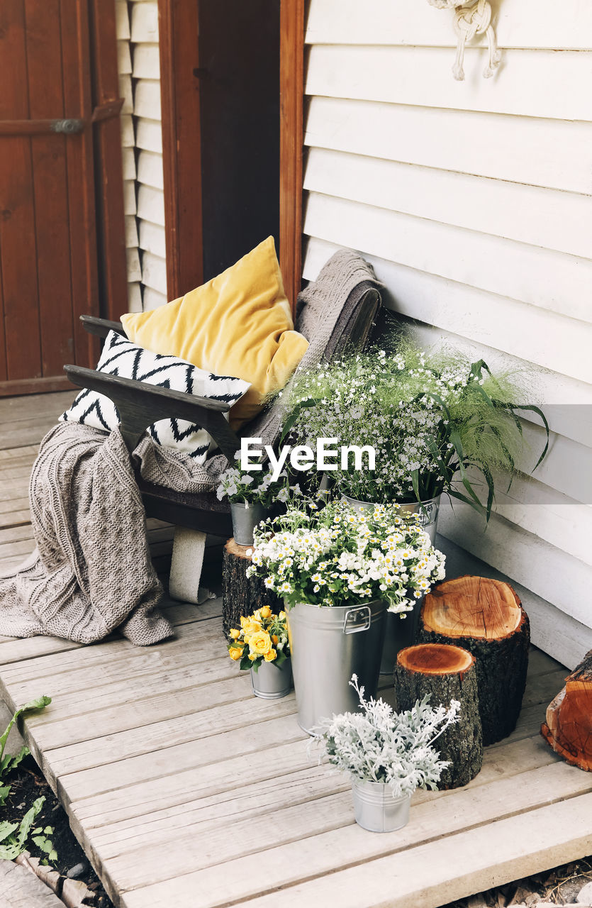 POTTED PLANTS IN FRONT OF WOODEN HOUSE