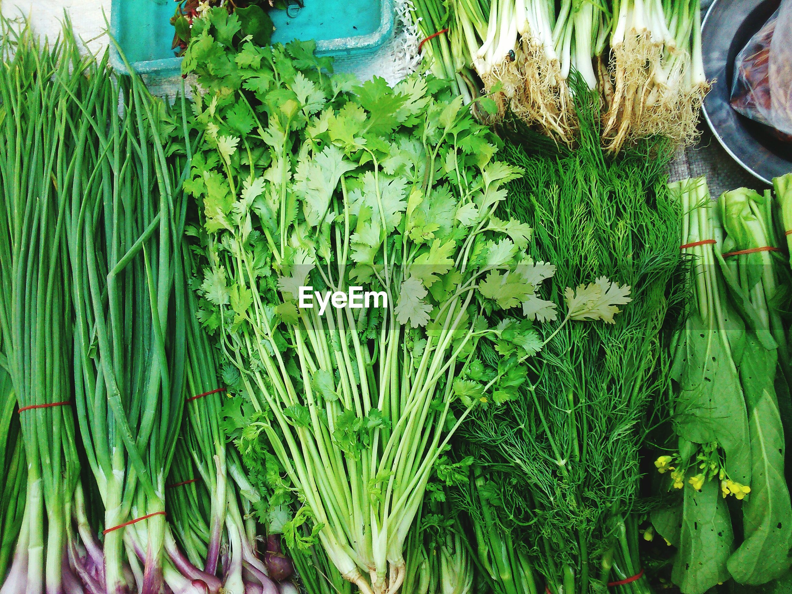 High angle view of green vegetables for sale at market stall