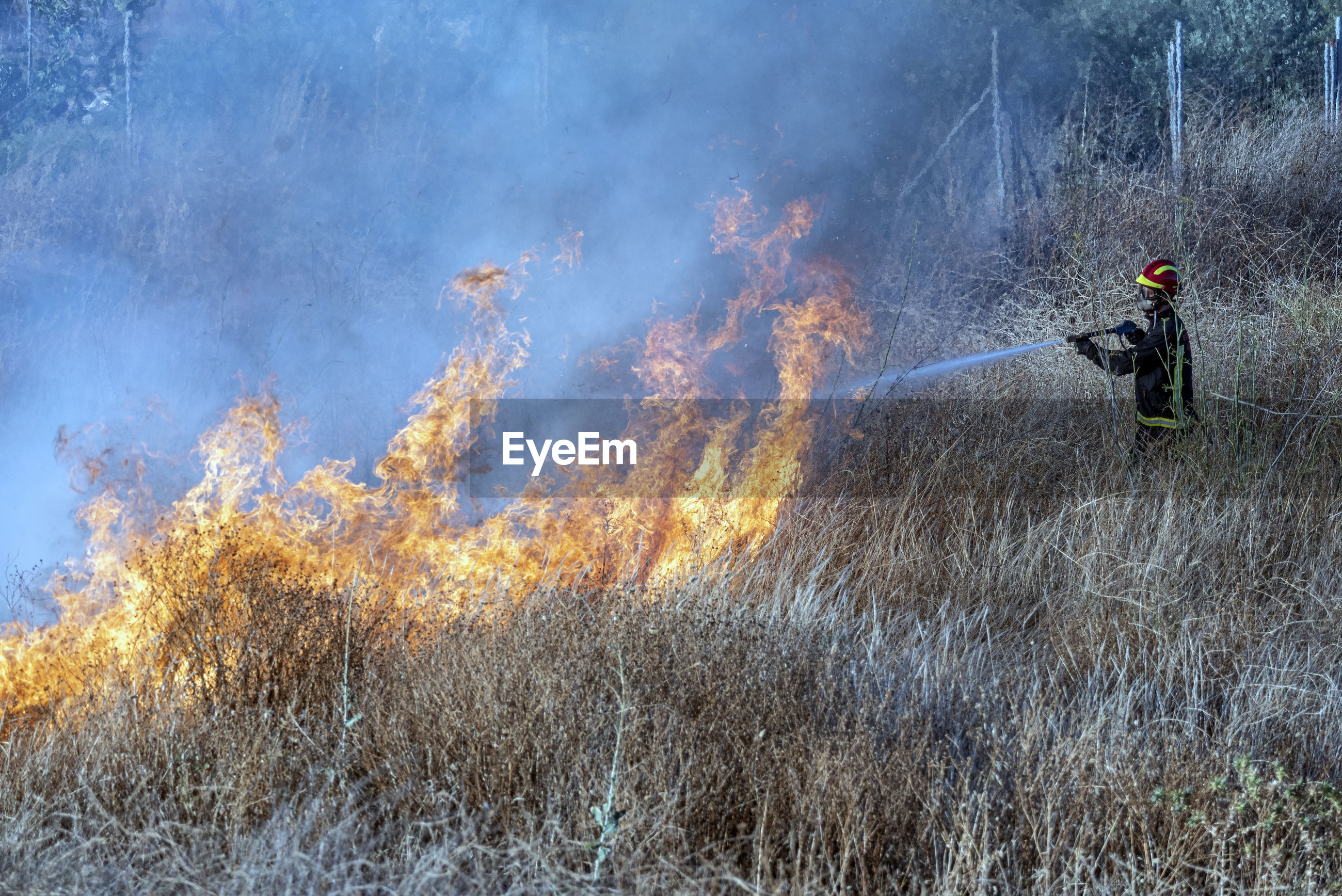 PANORAMIC VIEW OF FIRE CRACKERS ON LANDSCAPE