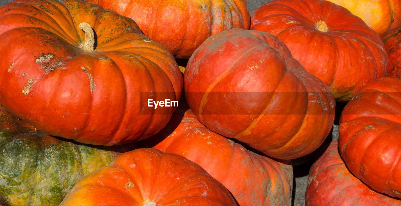 pumpkin, orange color, vegetable, food and drink, food, freshness, healthy eating, no people, backgrounds, full frame, raw food, squash - vegetable, day, halloween, close-up, outdoors