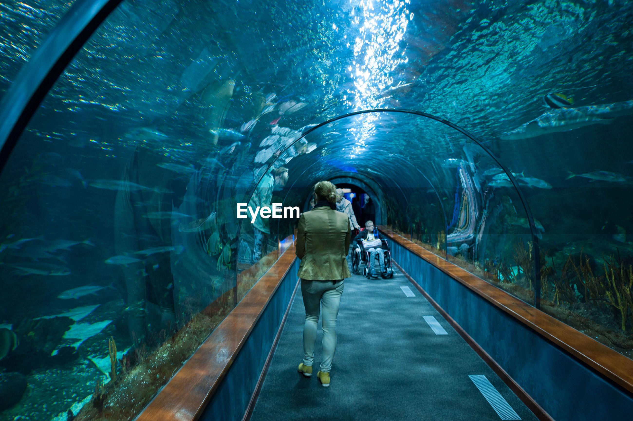 Rear view full length of woman walking in tunnel aquarium