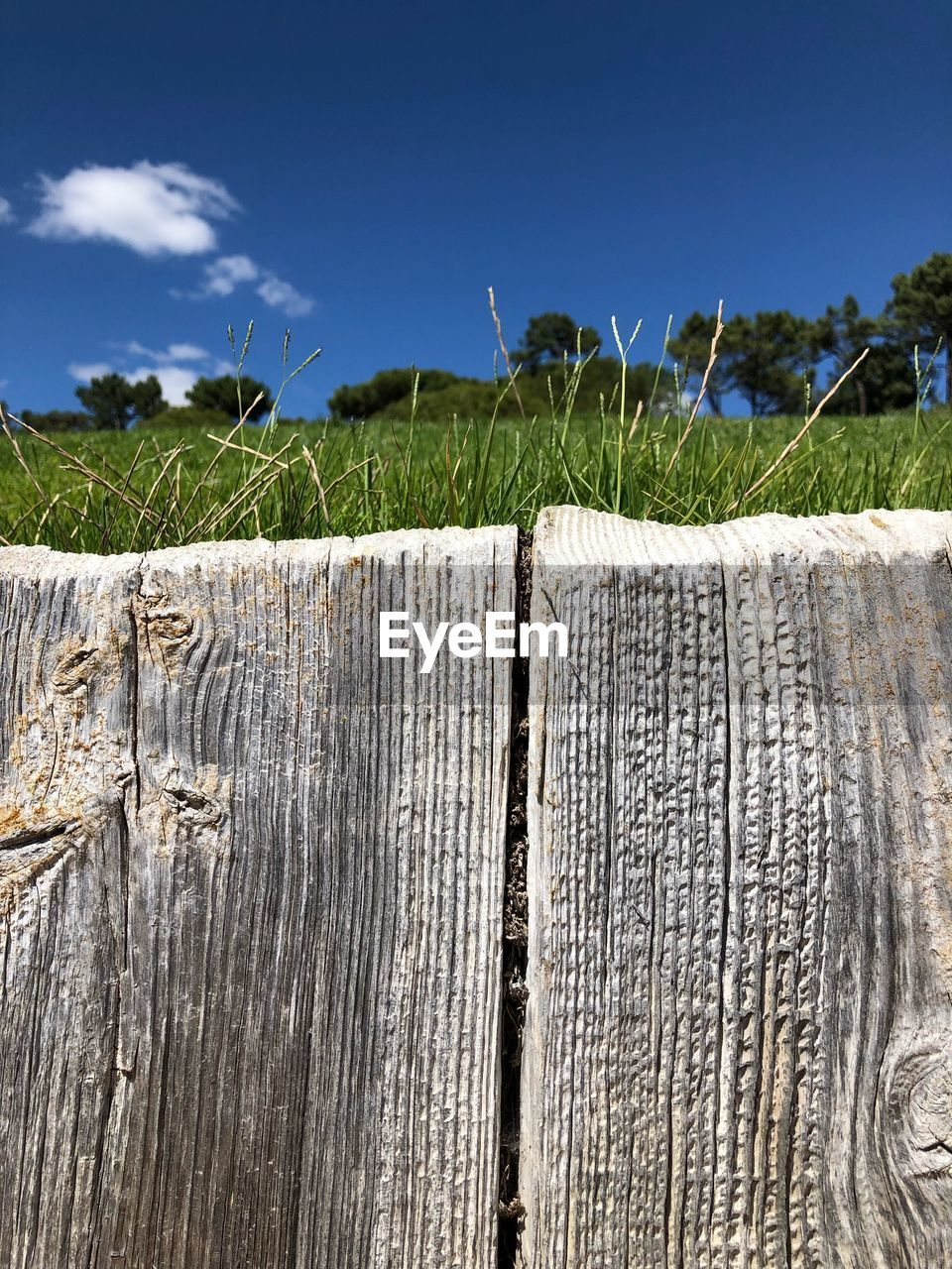 sky, wood - material, plant, nature, landscape, day, boundary, land, field, no people, barrier, fence, blue, rural scene, sunlight, outdoors, environment, growth, grass, tree, wooden post