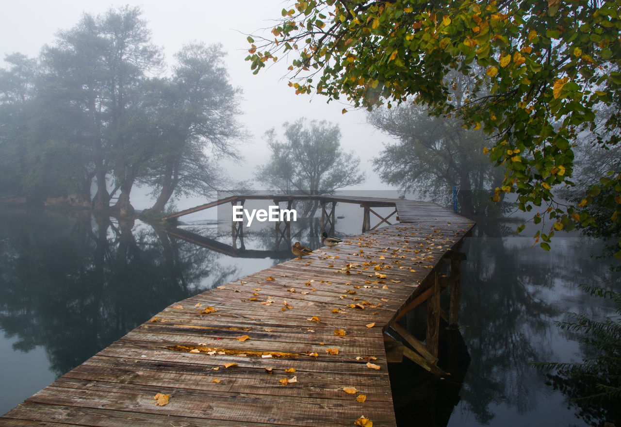 WOODEN PIER OVER LAKE