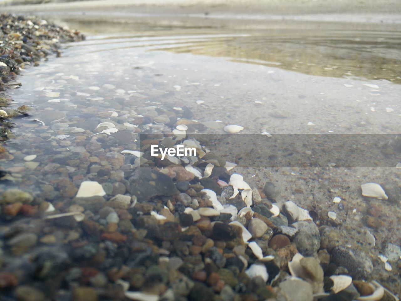 SURFACE LEVEL OF ROCKS IN WATER