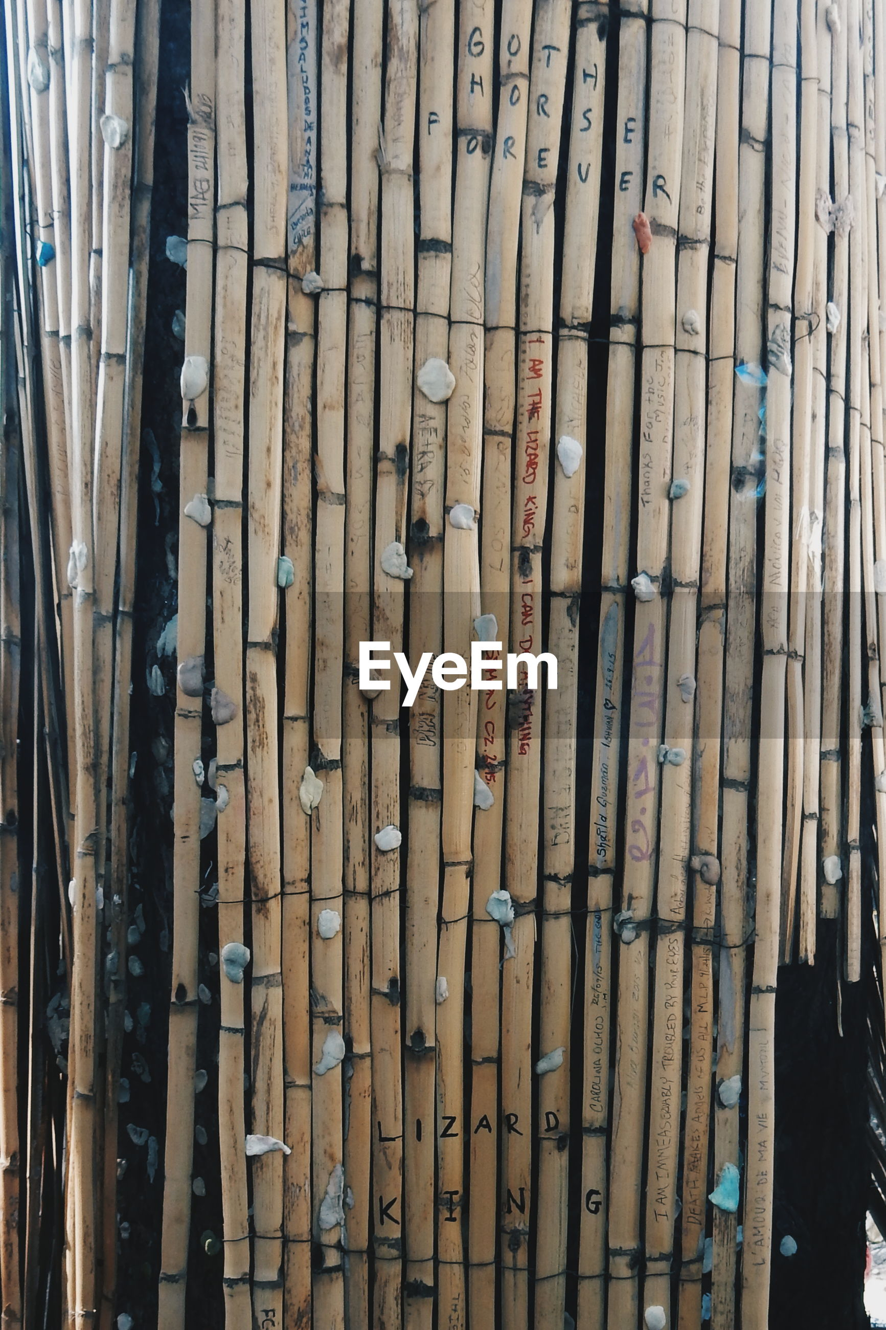 Close-Up Of Abandoned Bamboo Fence