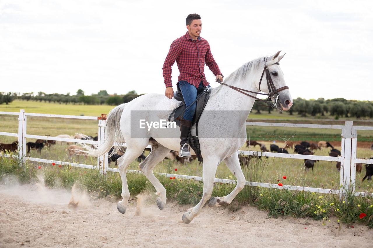 FULL LENGTH OF HORSE RIDING HORSES ON FIELD