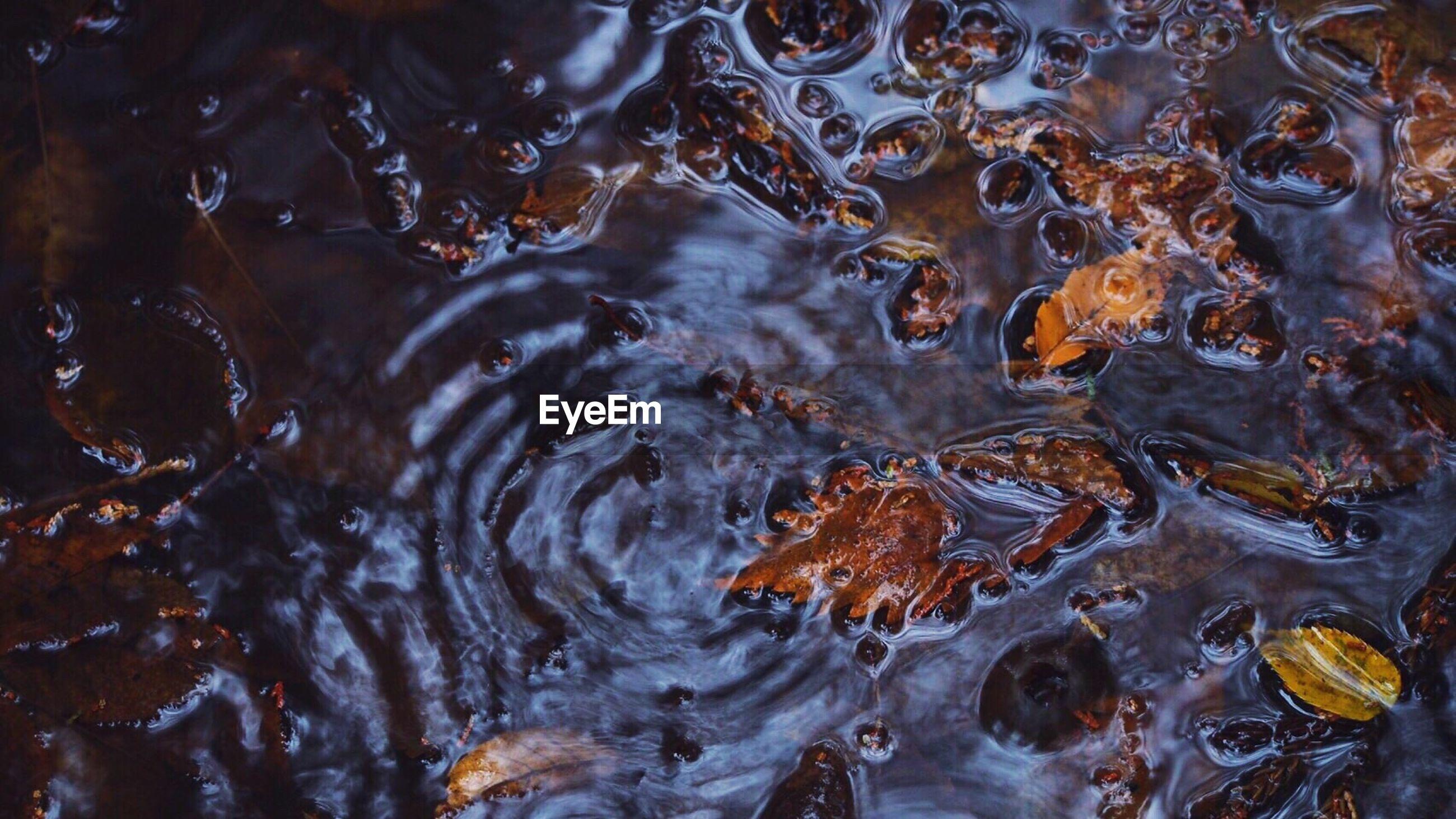 FULL FRAME SHOT OF WATER DROPS