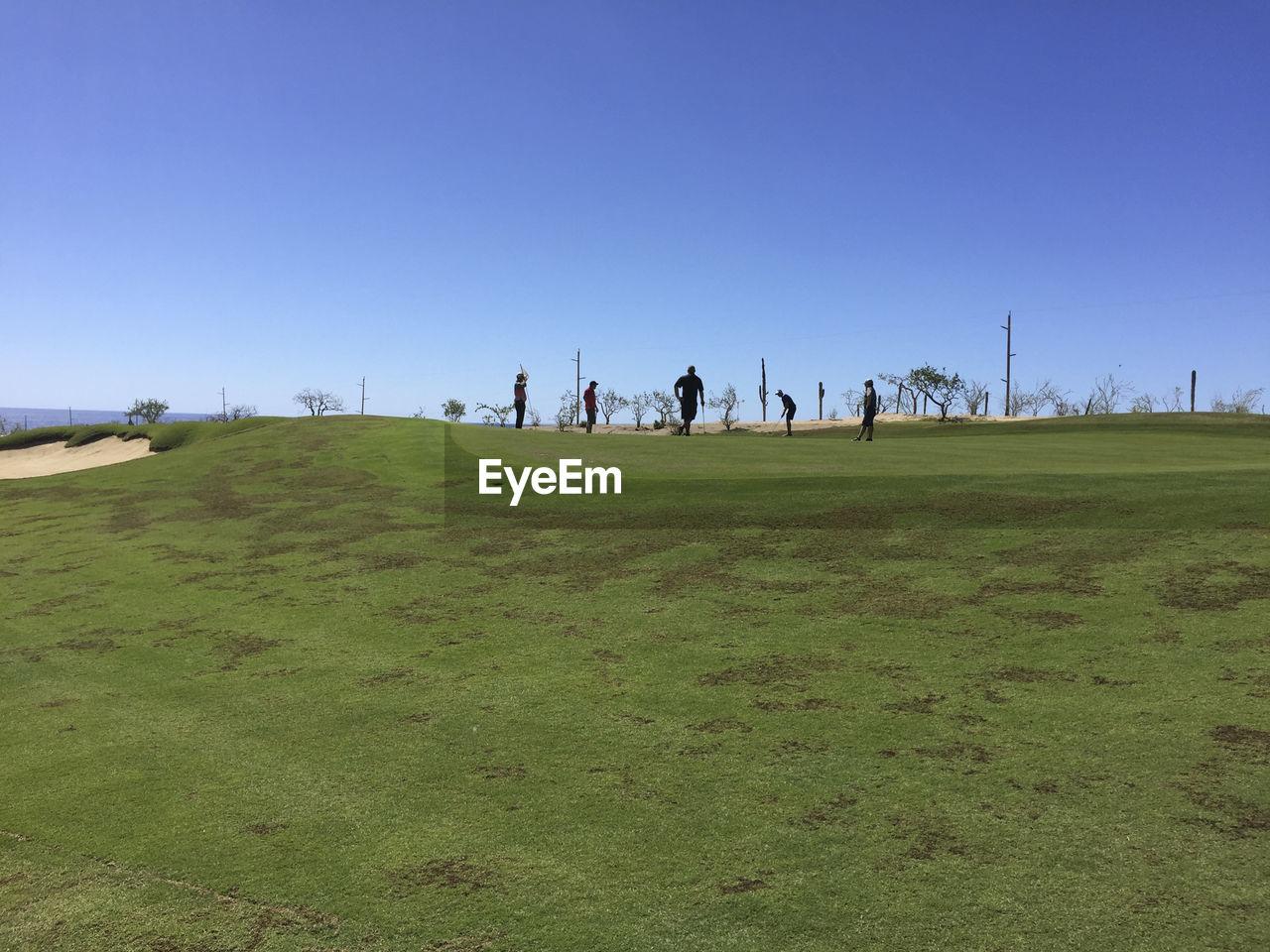 PEOPLE WALKING ON GRASSY LANDSCAPE