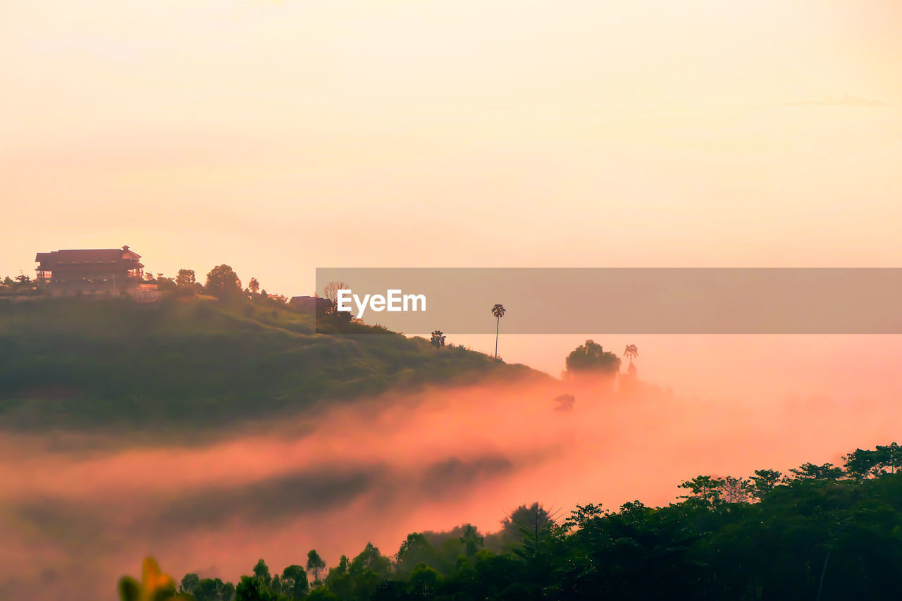 sky, sunset, tree, orange color, building exterior, plant, nature, architecture, built structure, beauty in nature, no people, scenics - nature, outdoors, copy space, fog, environment, growth, tranquility, tranquil scene, pollution