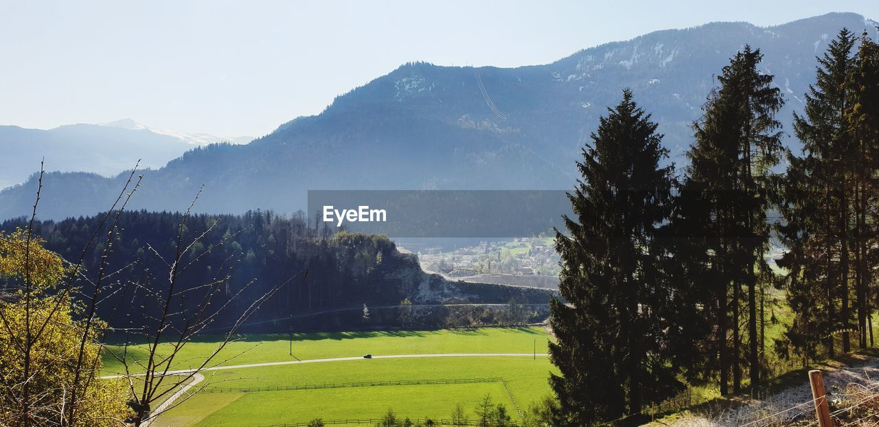 SCENIC VIEW OF TREES ON FIELD AGAINST MOUNTAINS