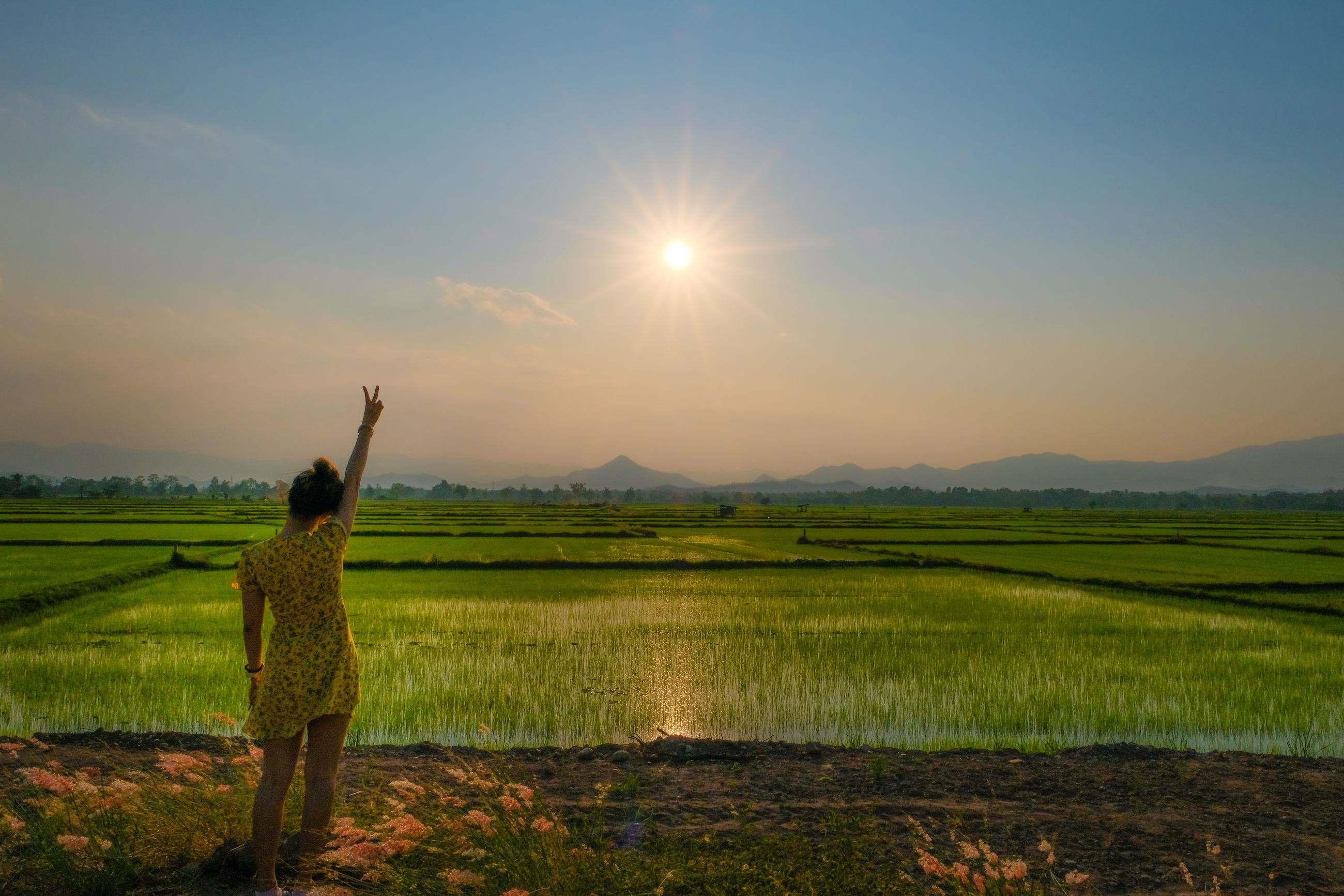 Rear view of woman with arm raised standing on agricultural field against sky during sunset
