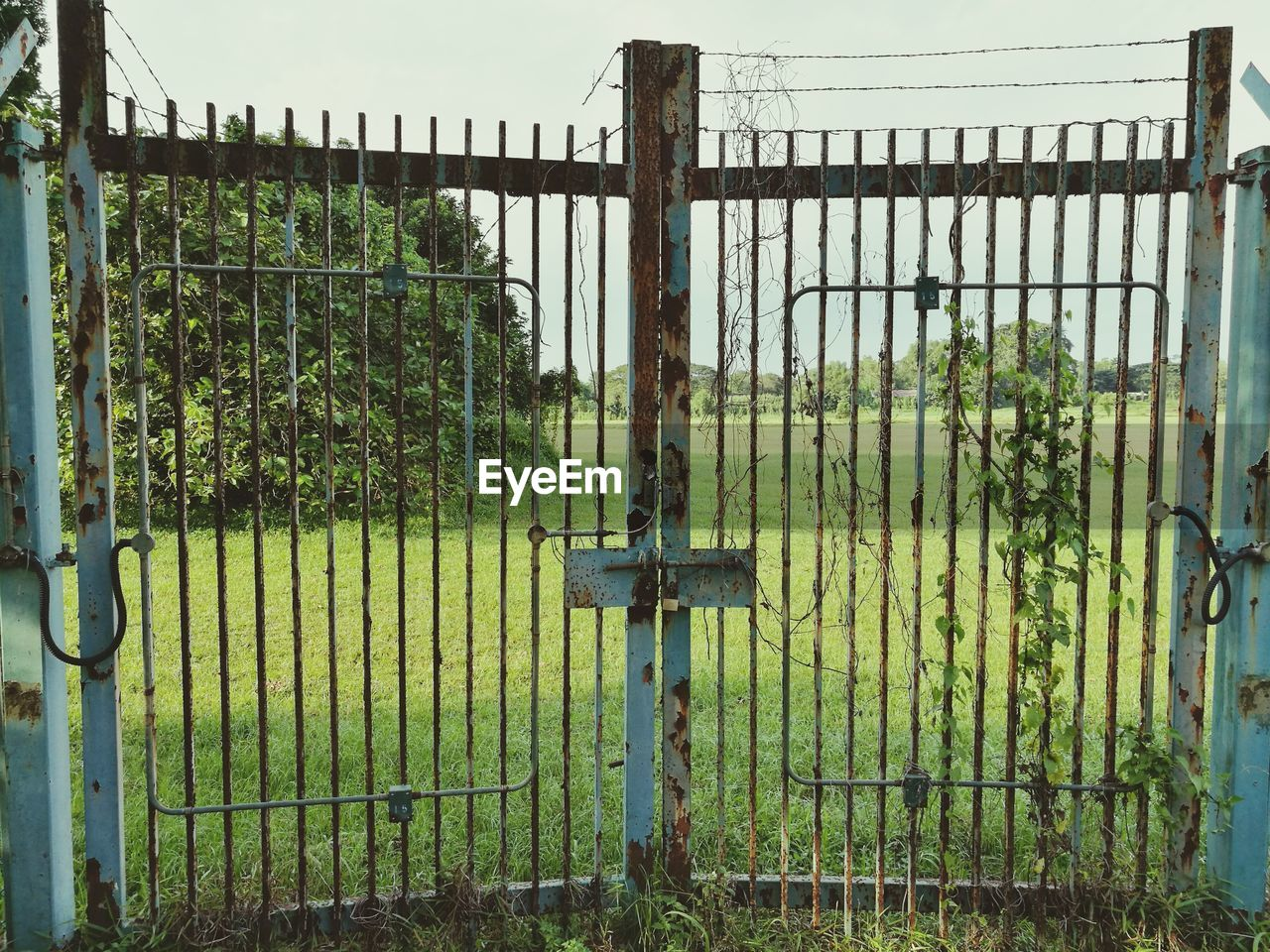Closed Metal Gate Against Sky