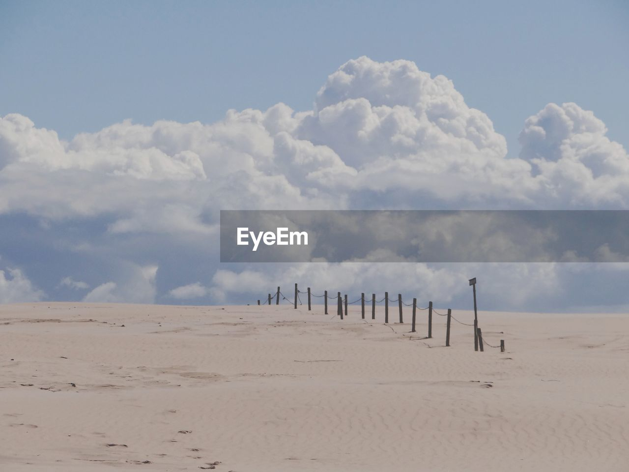 PANORAMIC VIEW OF WOODEN POSTS ON BEACH