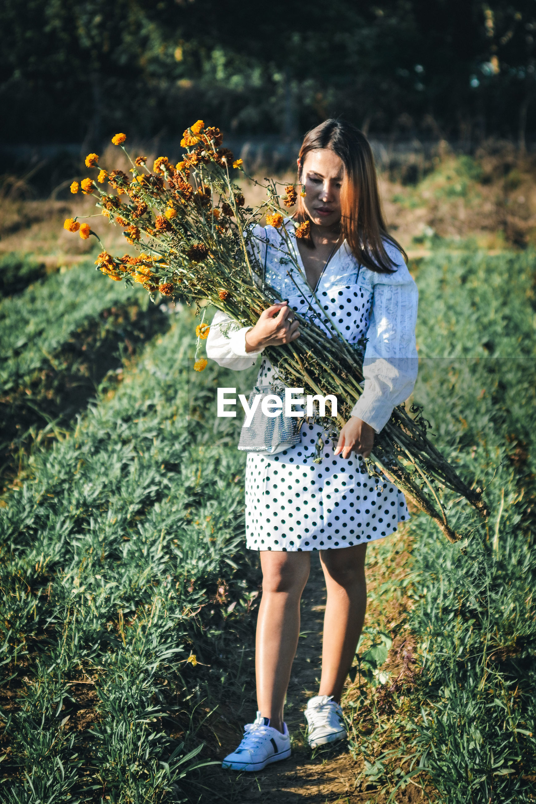 Full length of woman holding flowers on field