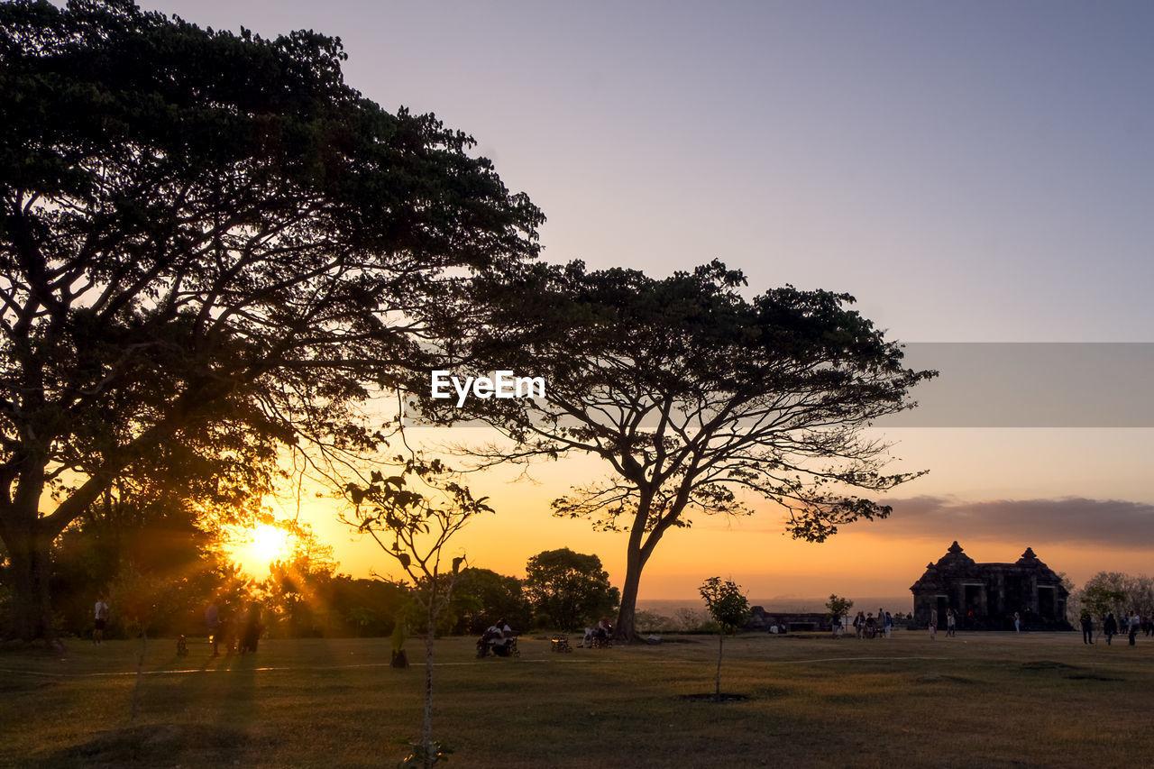 sky, tree, sunset, plant, sun, architecture, nature, built structure, orange color, building exterior, beauty in nature, scenics - nature, sunlight, field, outdoors, land, landscape, environment, growth, building