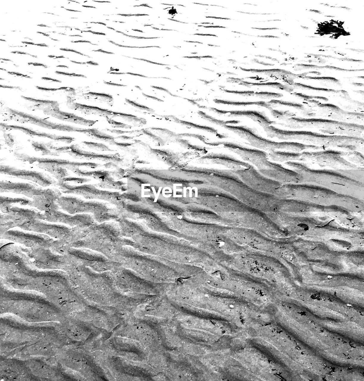 backgrounds, full frame, sand, water, no people, nature, day, wet, pattern, beach, outdoors, close-up