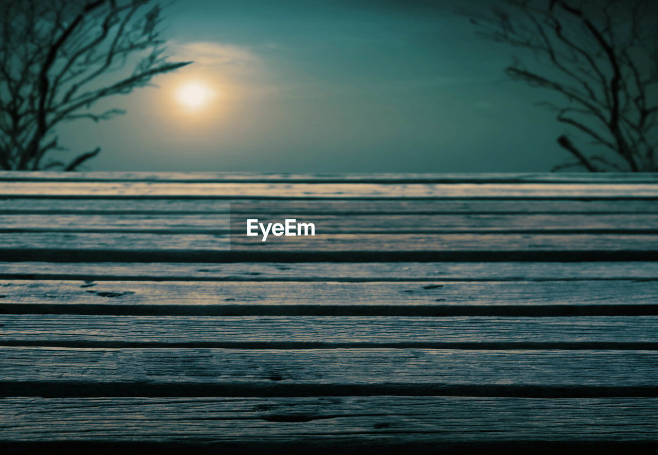 nature, sea, beauty in nature, scenics, tranquility, tranquil scene, water, no people, outdoors, idyllic, horizon over water, sun, sunset, sky, tree, bare tree, day, branch, clear sky, close-up