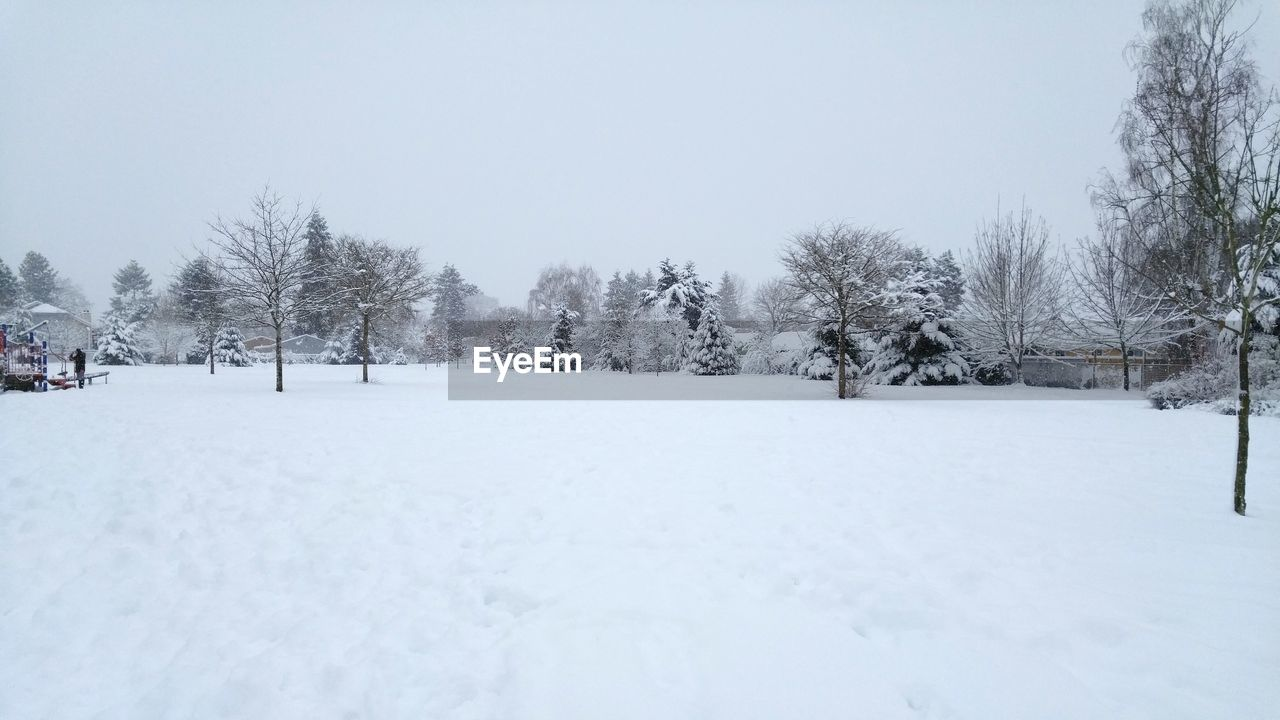 snow, winter, cold temperature, white color, nature, tranquil scene, tranquility, outdoors, beauty in nature, day, tree, scenics, no people, clear sky, sky