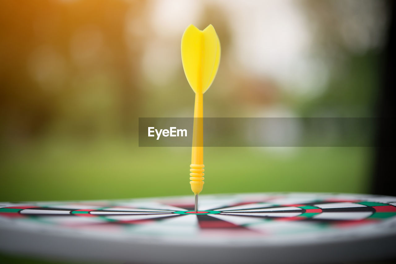yellow, selective focus, focus on foreground, close-up, no people, indoors, table, day, still life, multi colored, plant, sport, leisure games, achievement, nature, flower, sports target, toy, relaxation