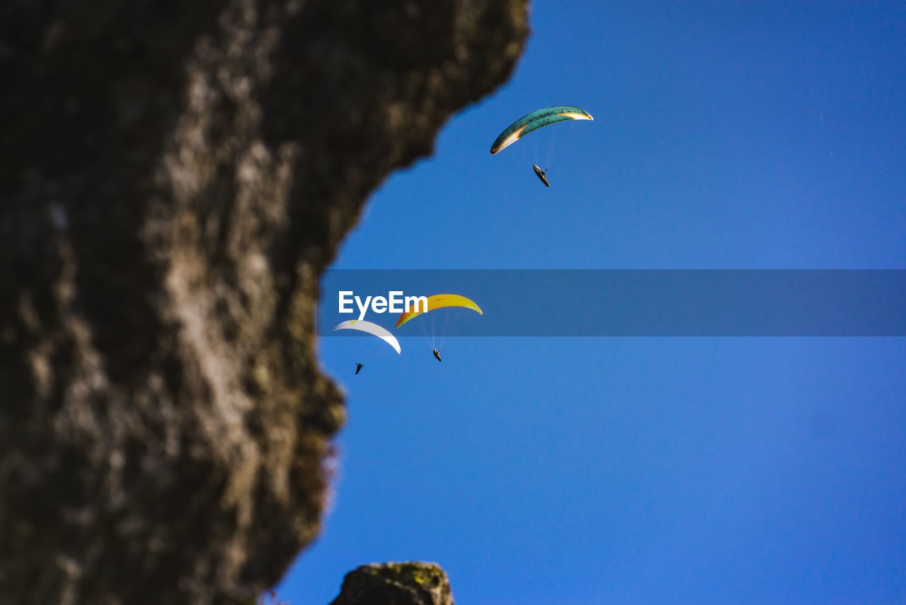 flying, sky, low angle view, extreme sports, parachute, adventure, mid-air, blue, nature, day, paragliding, sport, unrecognizable person, animal, outdoors, clear sky, freedom, beauty in nature, bird, animal themes