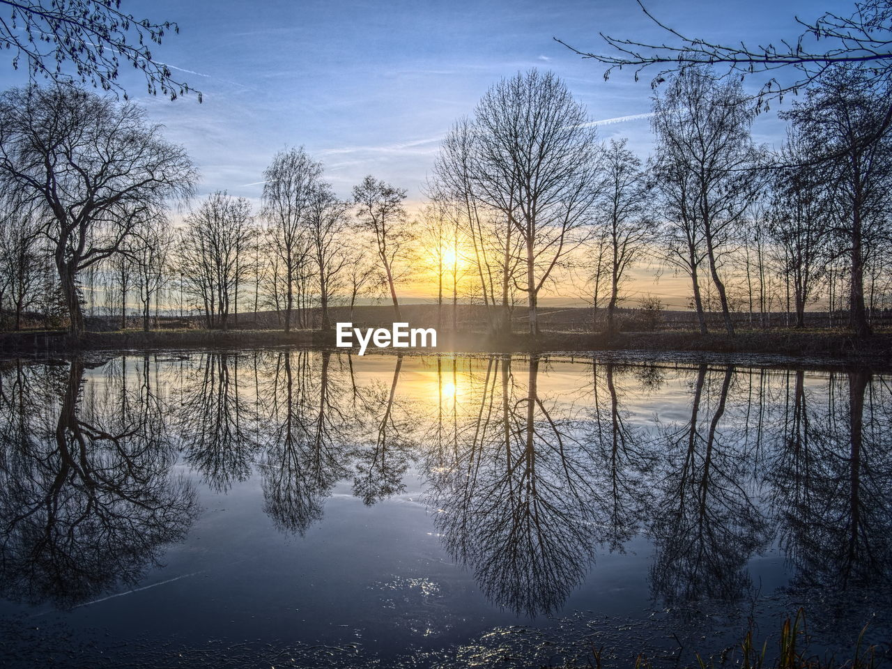 reflection, beauty in nature, nature, water, tranquil scene, tranquility, sky, lake, scenics, bare tree, tree, outdoors, sunset, idyllic, cloud - sky, no people, day