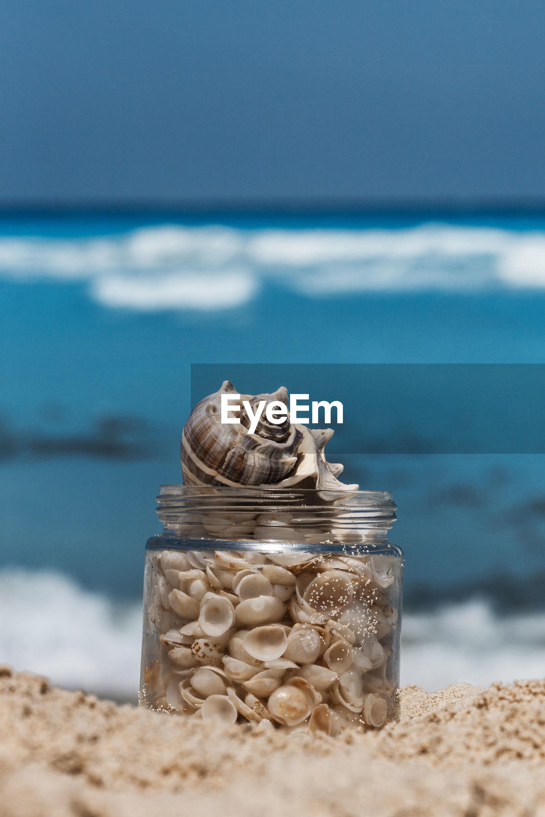 CLOSE-UP OF STONE ON BEACH