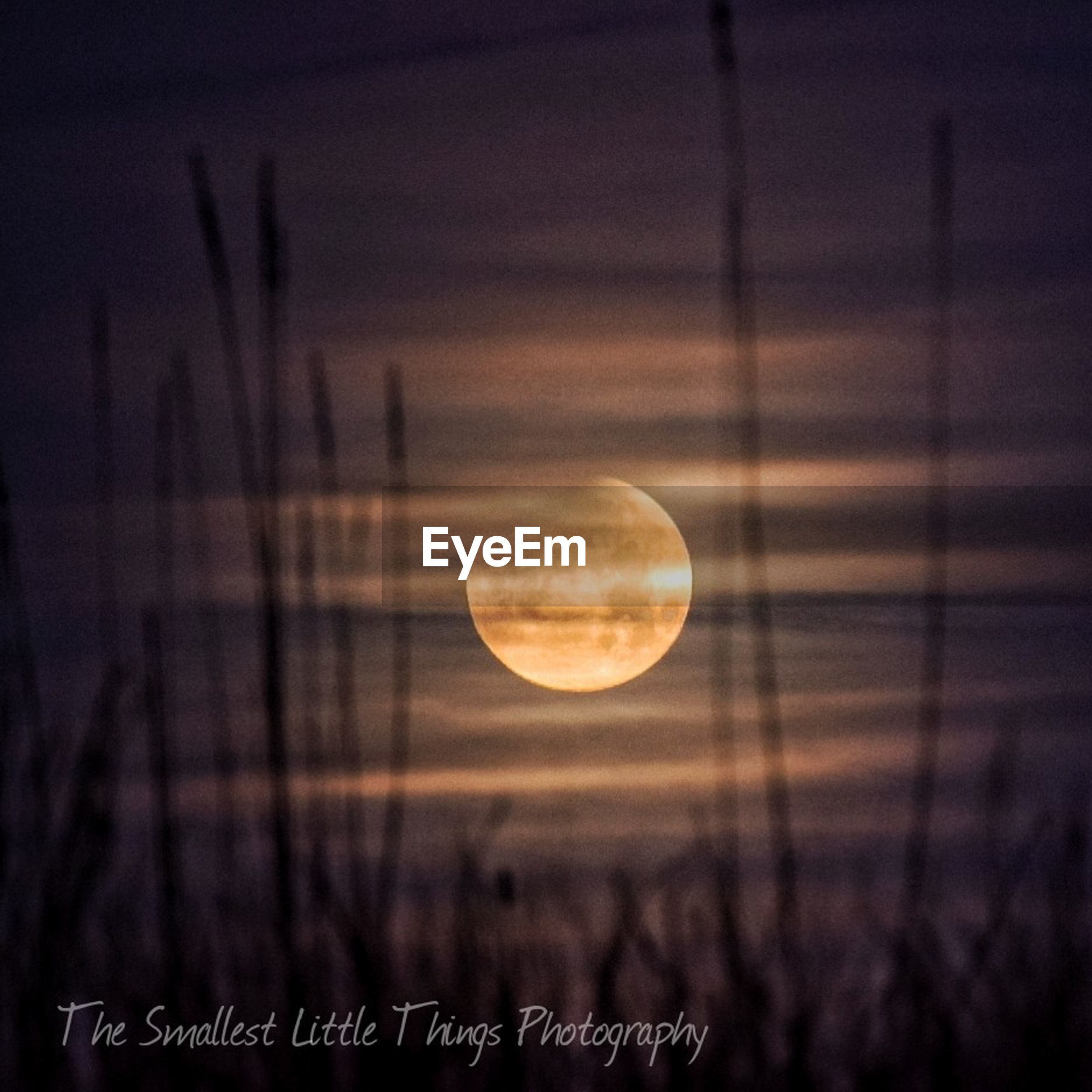 beauty in nature, moon, nature, scenics, sunset, tranquility, tranquil scene, sky, no people, landscape, outdoors, astronomy, night, close-up, space