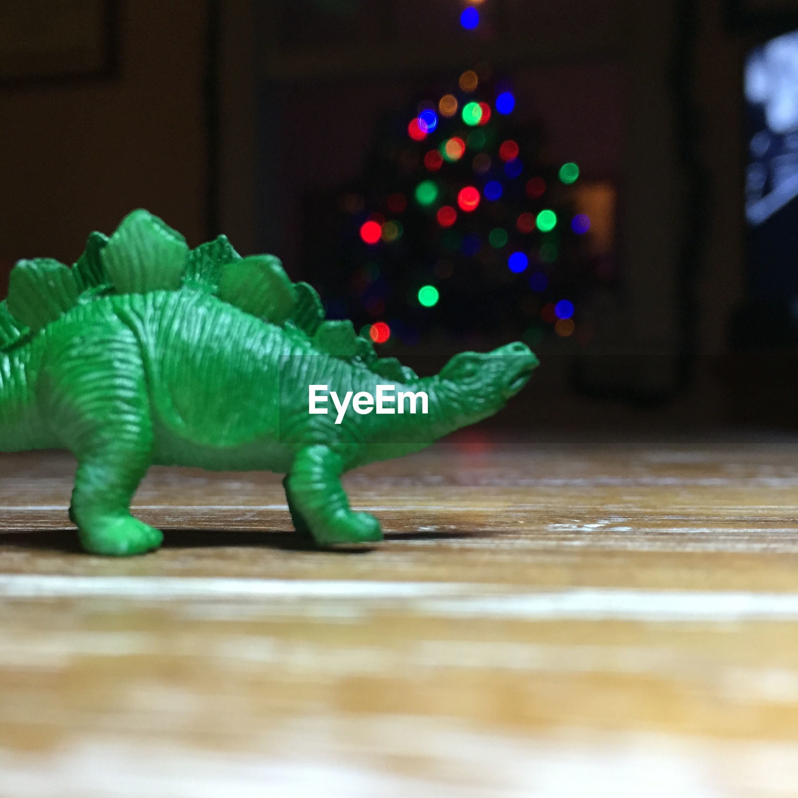 Surface level view of green dinosaur toy on floor at home