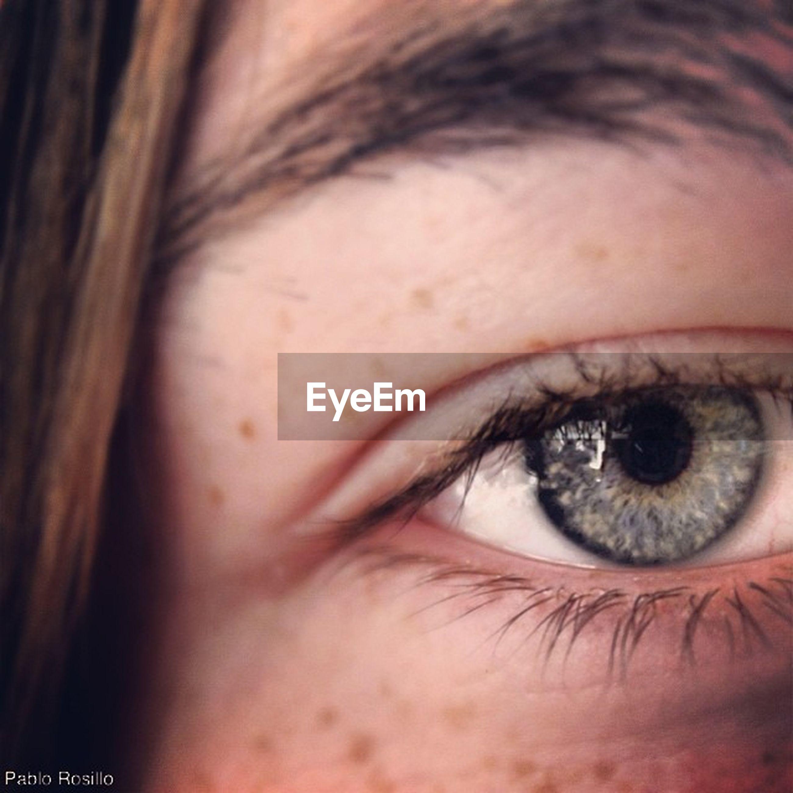 human eye, close-up, eyelash, looking at camera, headshot, portrait, human face, eyesight, lifestyles, young adult, person, human skin, sensory perception, young women, part of, eyebrow, eyeball