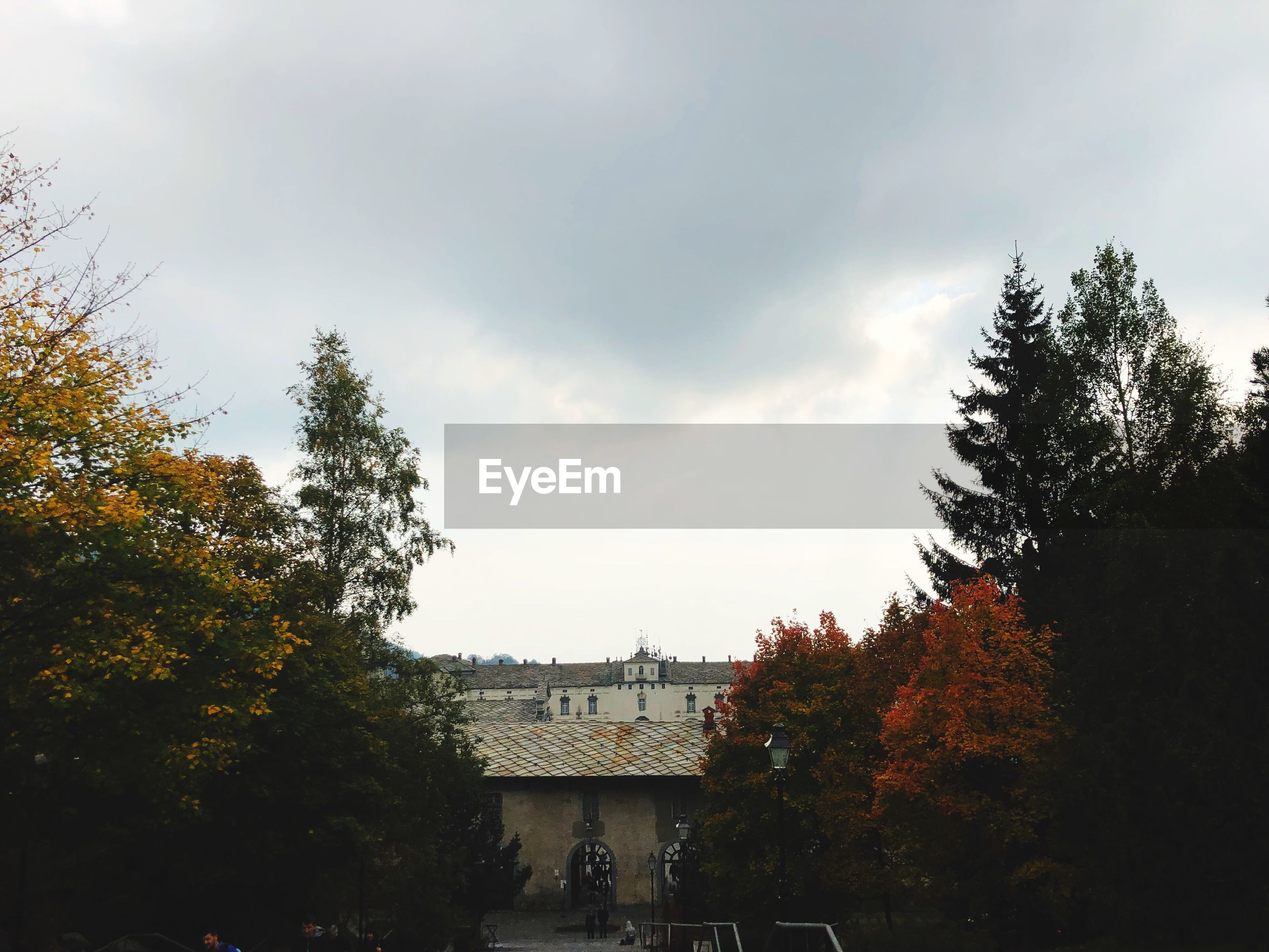 tree, plant, architecture, built structure, building exterior, sky, autumn, cloud - sky, building, nature, change, house, growth, no people, day, residential district, beauty in nature, outdoors, roof, orange color