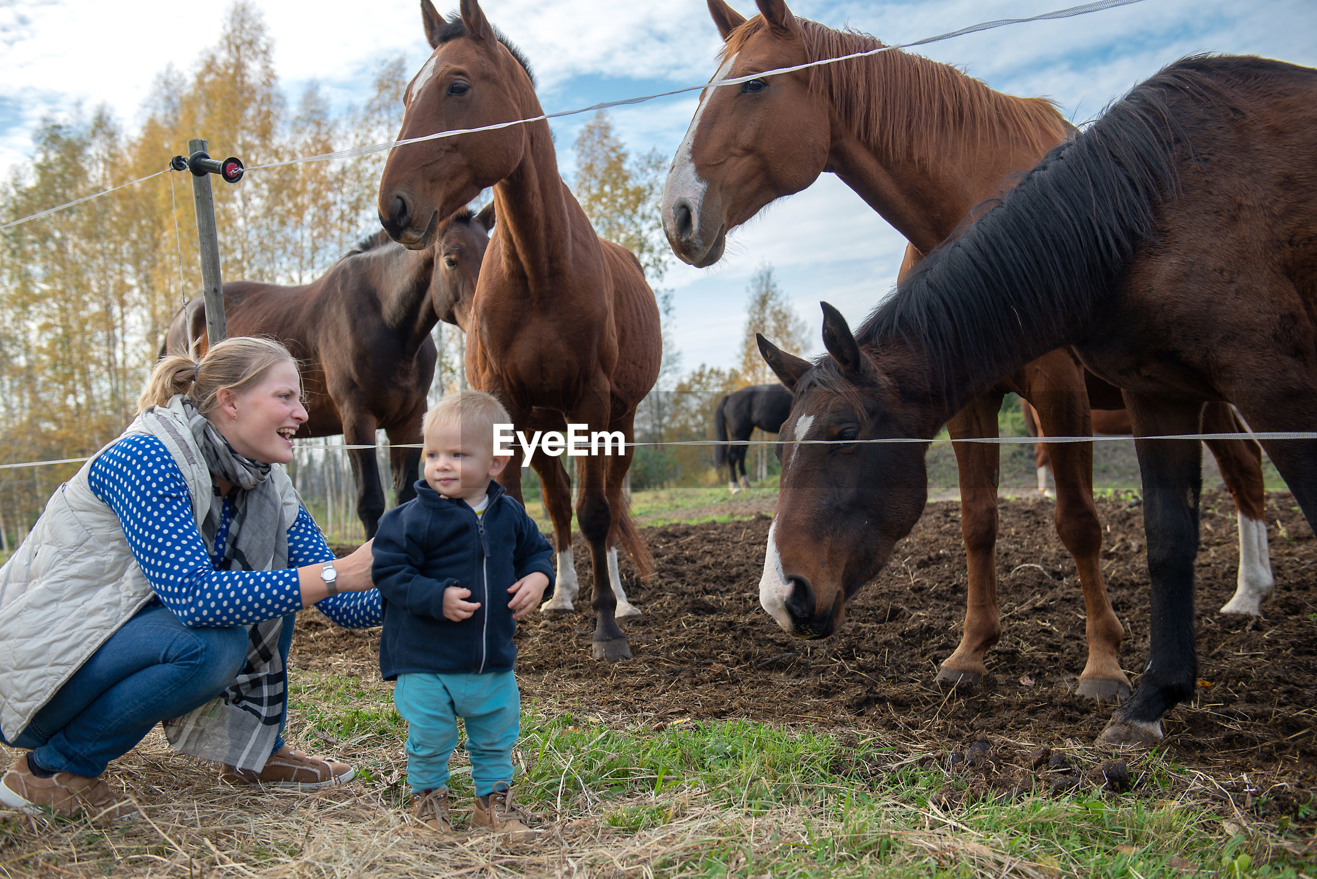 Mother and son looking at horses in ranch