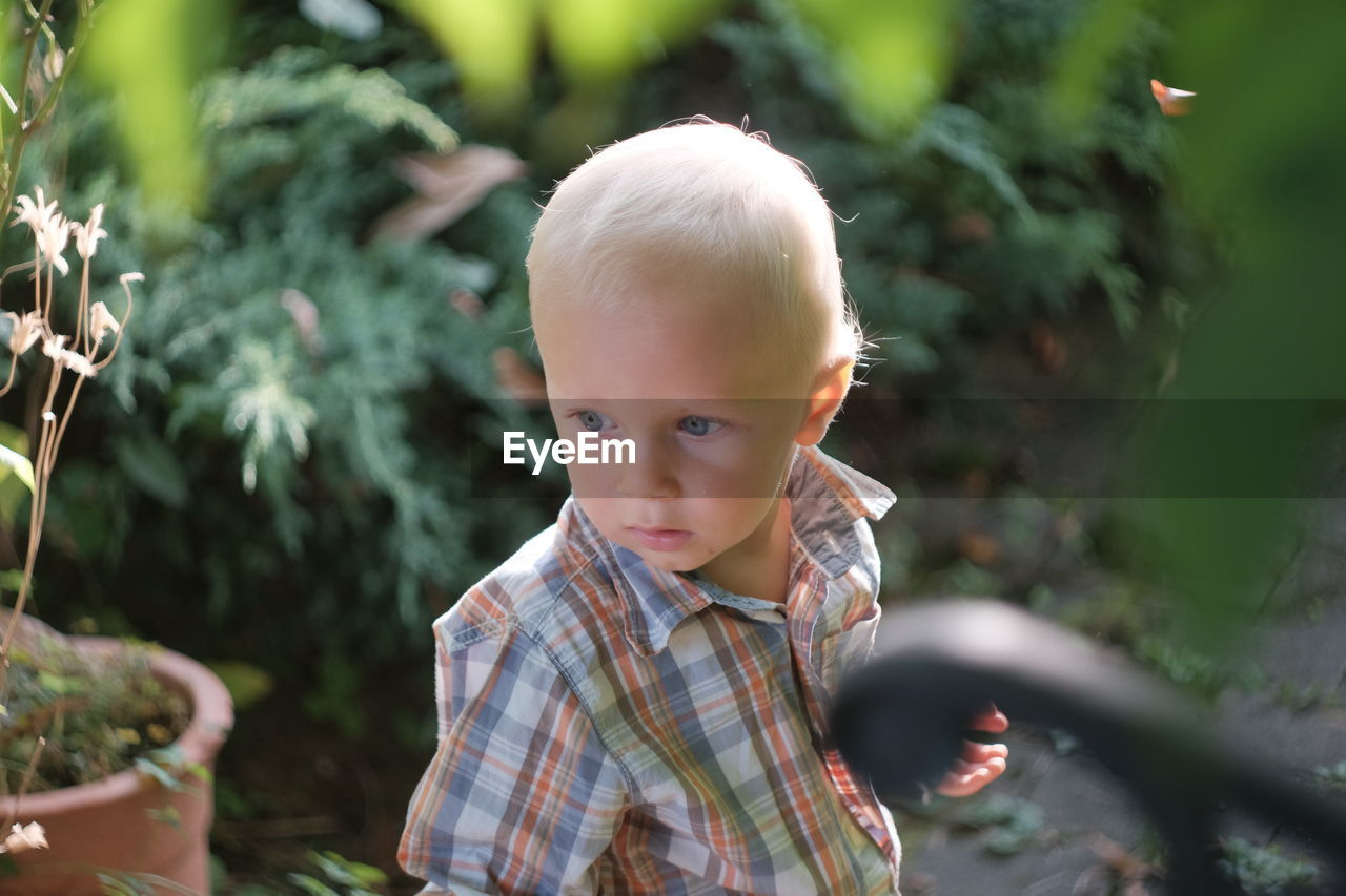 Boy looking away while standing at backyard