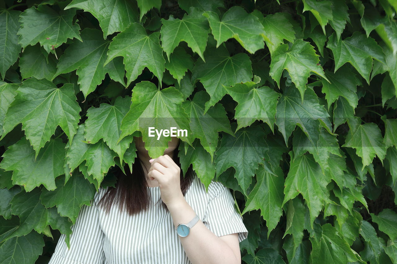 Close-up of woman face covered by leaves