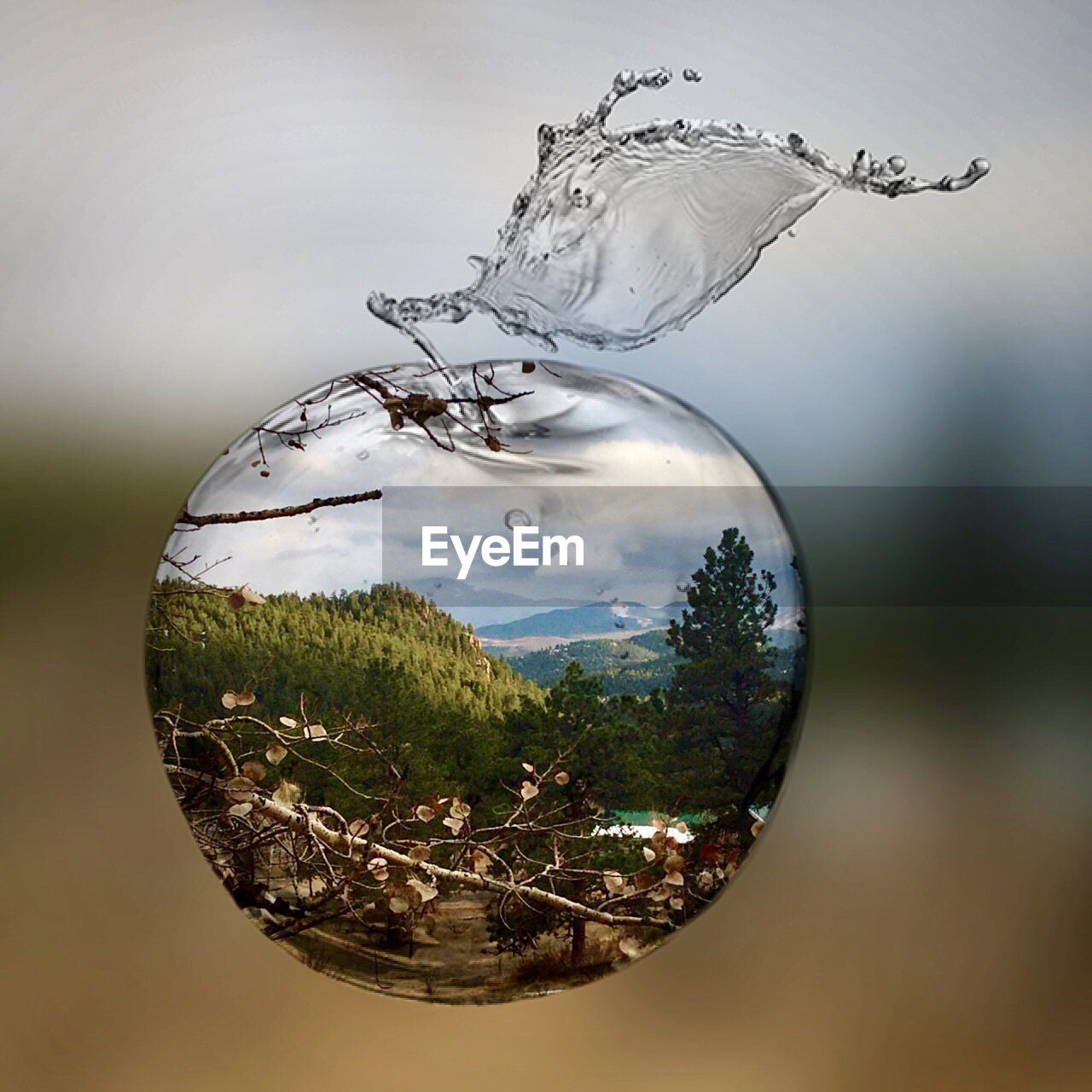 focus on foreground, close-up, transparent, no people, glass - material, nature, motion, outdoors, day, water, glass, tree, plant, freshness, reflection, sphere, food and drink, splashing, refreshment