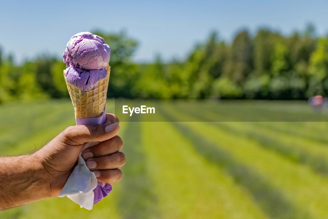 ice cream, frozen, human hand, sweet food, sweet, hand, frozen food, dairy product, dessert, one person, food, ice cream cone, food and drink, human body part, plant, temptation, nature, holding, day, real people, outdoors, purple, frozen sweet food