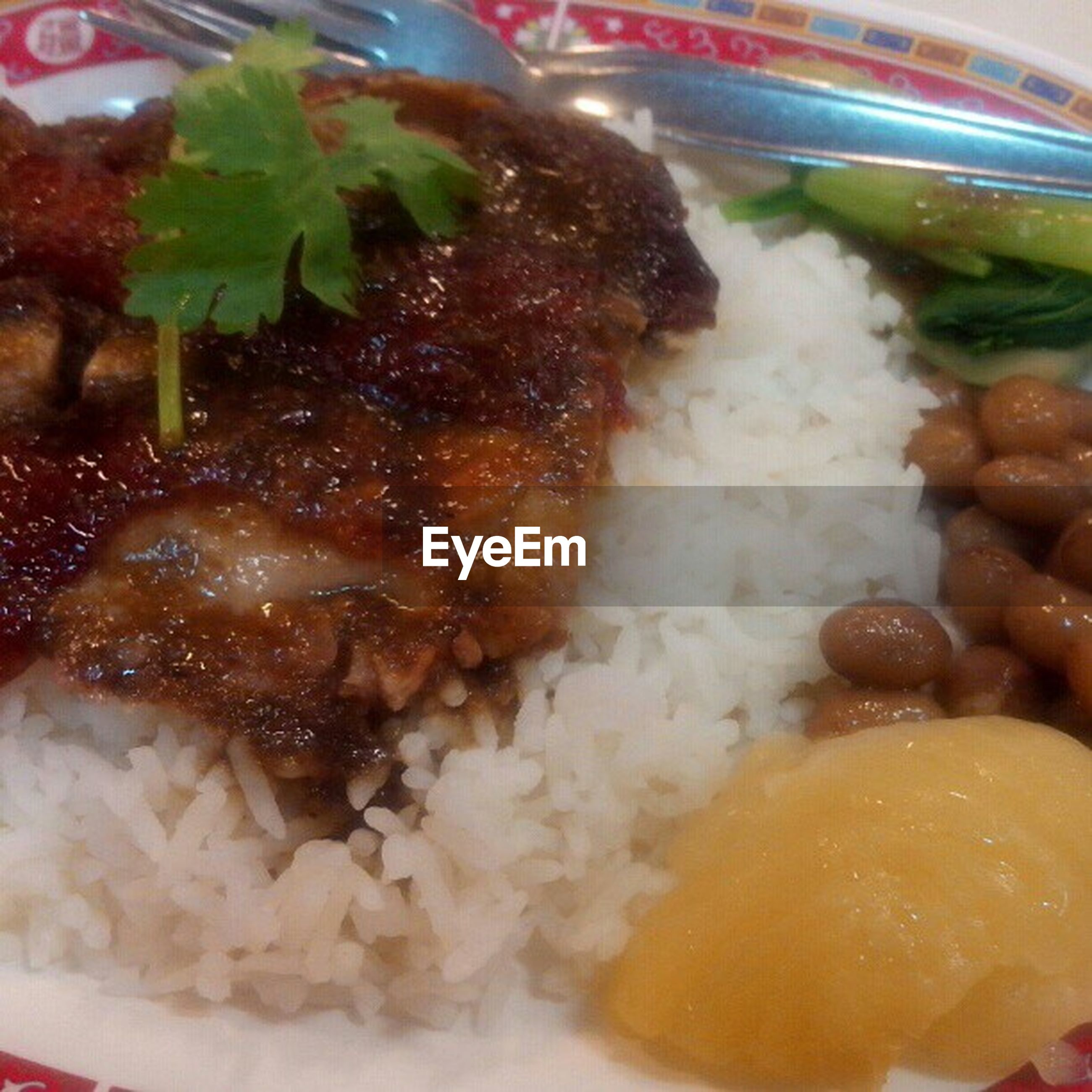 food and drink, food, freshness, ready-to-eat, indoors, still life, close-up, plate, healthy eating, meal, indulgence, serving size, meat, seafood, high angle view, fish, served, vegetable, no people, selective focus
