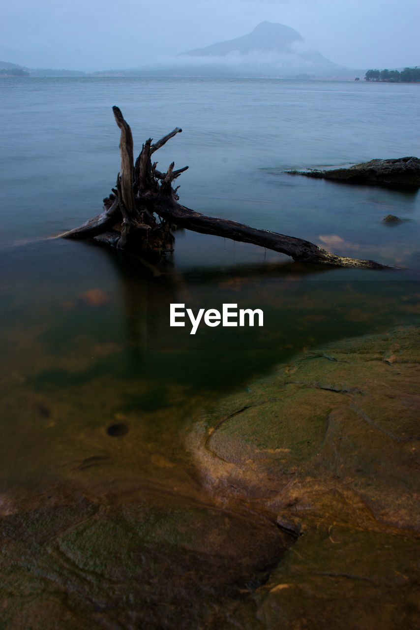 nature, tranquility, water, tranquil scene, no people, scenics, outdoors, beauty in nature, day, sea, mountain, dead tree, sky
