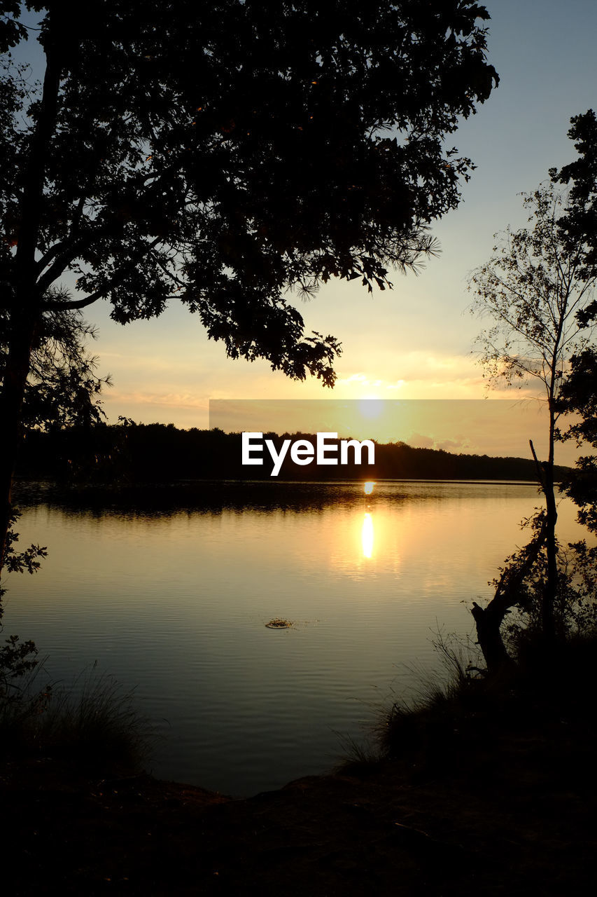 sky, tree, water, sunset, lake, tranquility, beauty in nature, scenics - nature, silhouette, tranquil scene, reflection, plant, no people, nature, idyllic, non-urban scene, orange color, sun, cloud - sky, outdoors