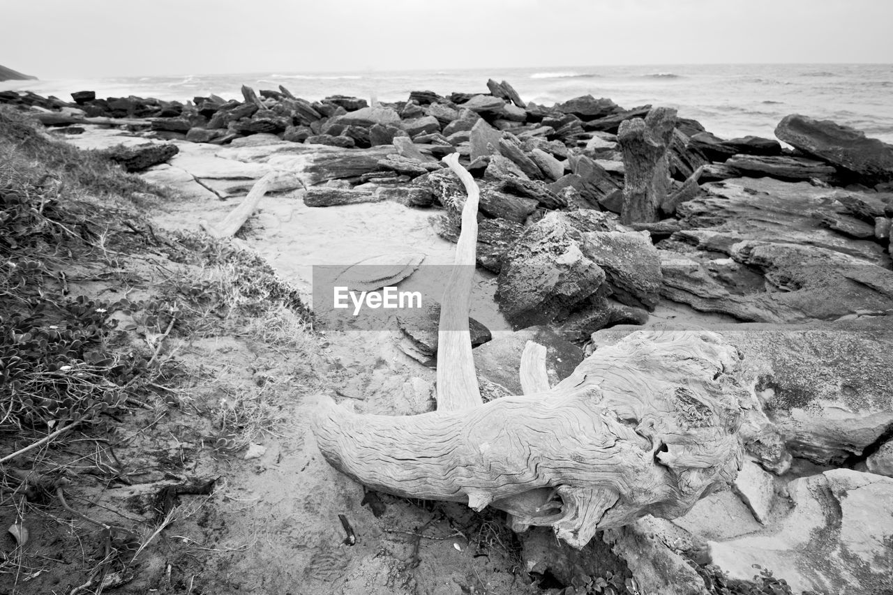 sea, water, beach, land, sky, nature, rock, horizon over water, tranquility, solid, rock - object, no people, day, horizon, tranquil scene, beauty in nature, scenics - nature, outdoors, wood, driftwood