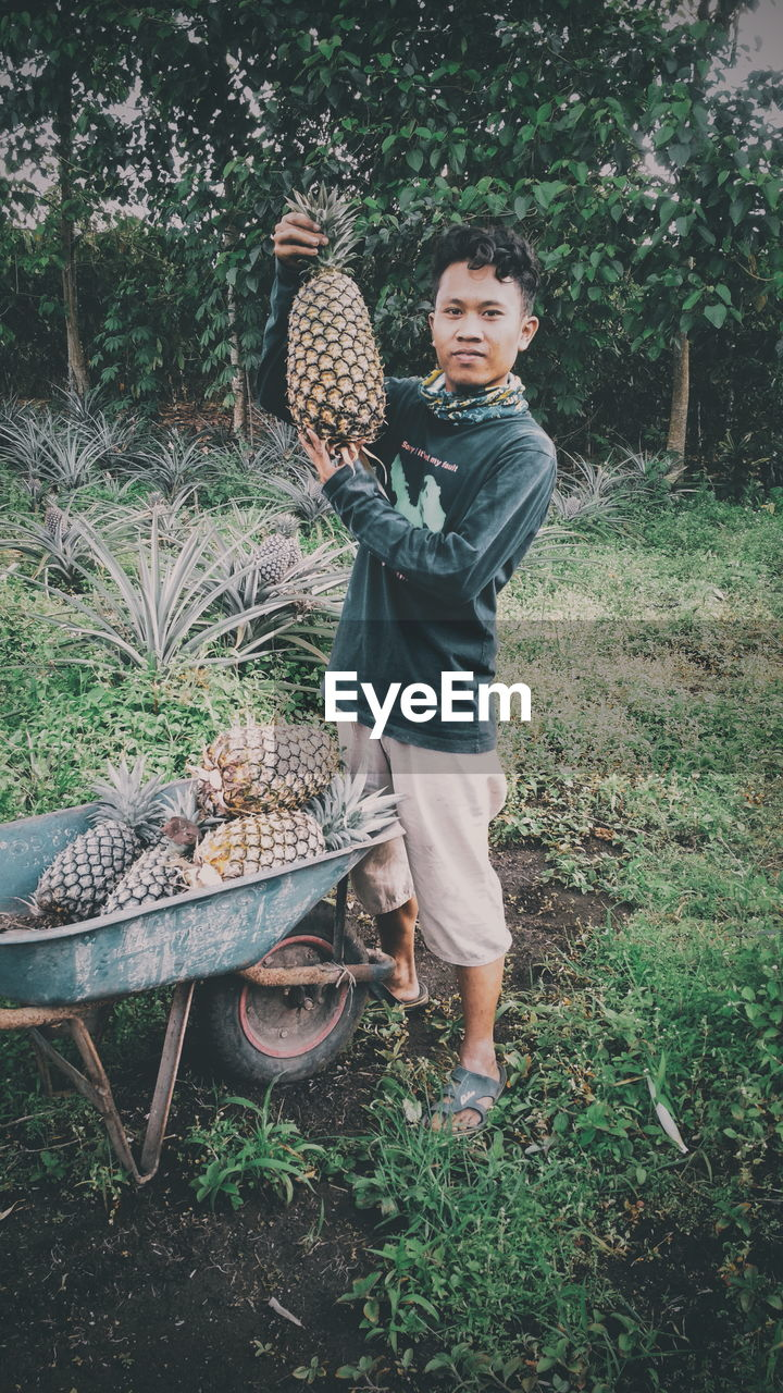 Full length of man with pineapples while standing on field