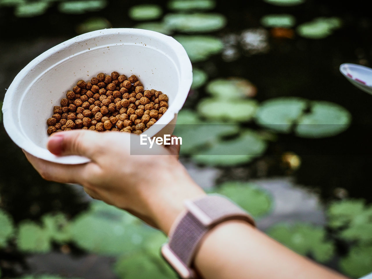Cropped hand holding food in bowl against lake