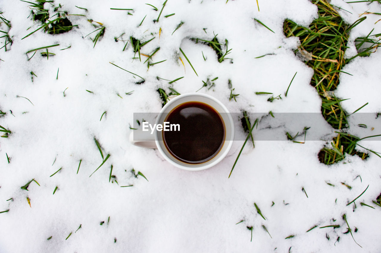 High angle view of black coffee cup on snow covered plants