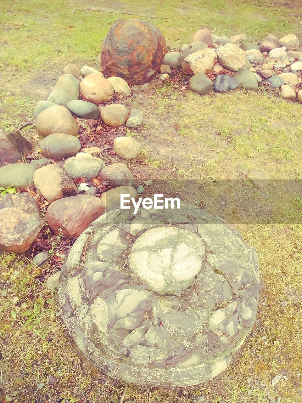 rock, solid, land, no people, nature, day, stone - object, stone, high angle view, rock - object, pebble, plant, water, close-up, outdoors, shell, food and drink, food, shape, beauty in nature