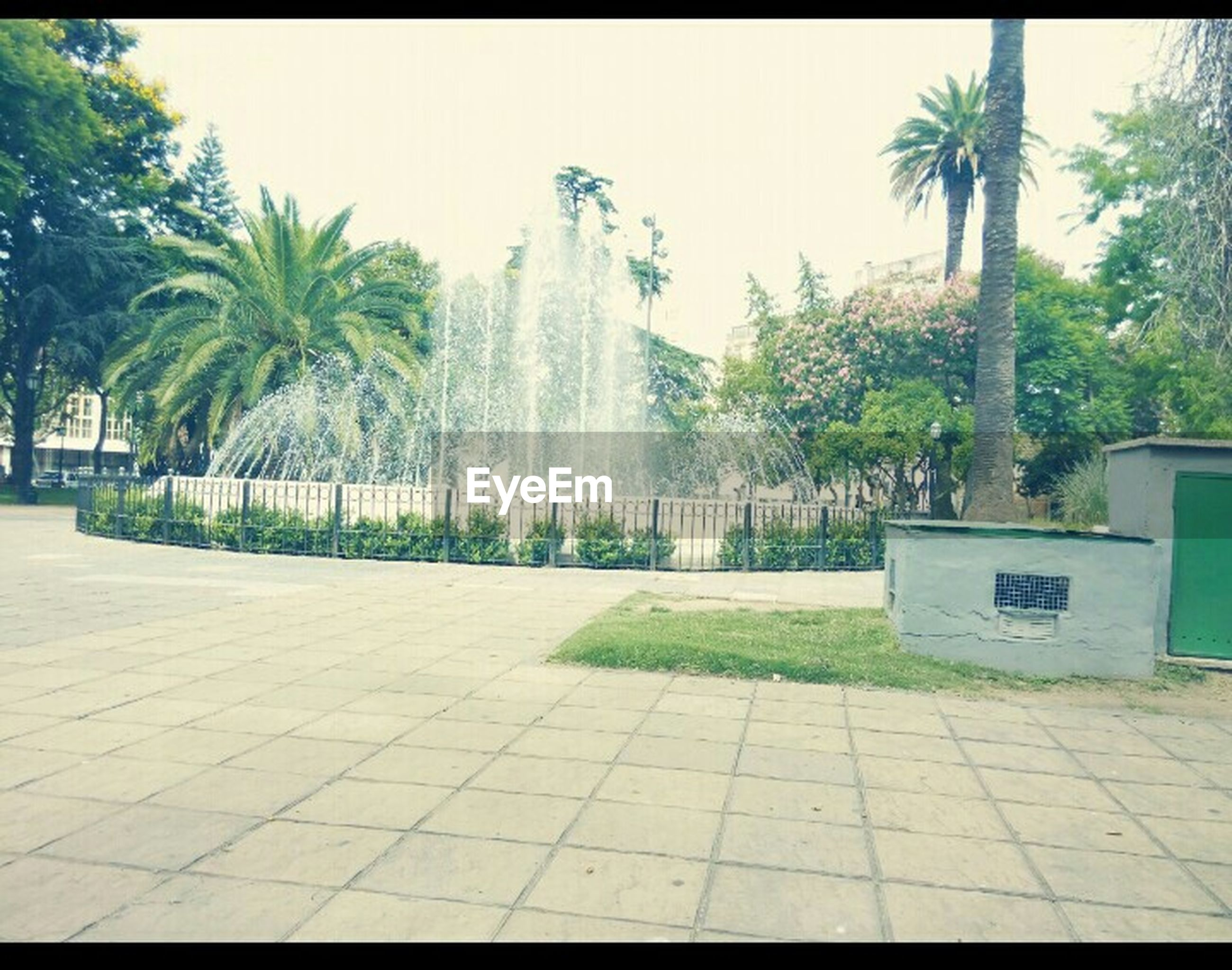 tree, palm tree, growth, sunlight, green color, plant, footpath, built structure, park - man made space, building exterior, architecture, fountain, day, incidental people, formal garden, nature, shadow, outdoors, paving stone, sidewalk